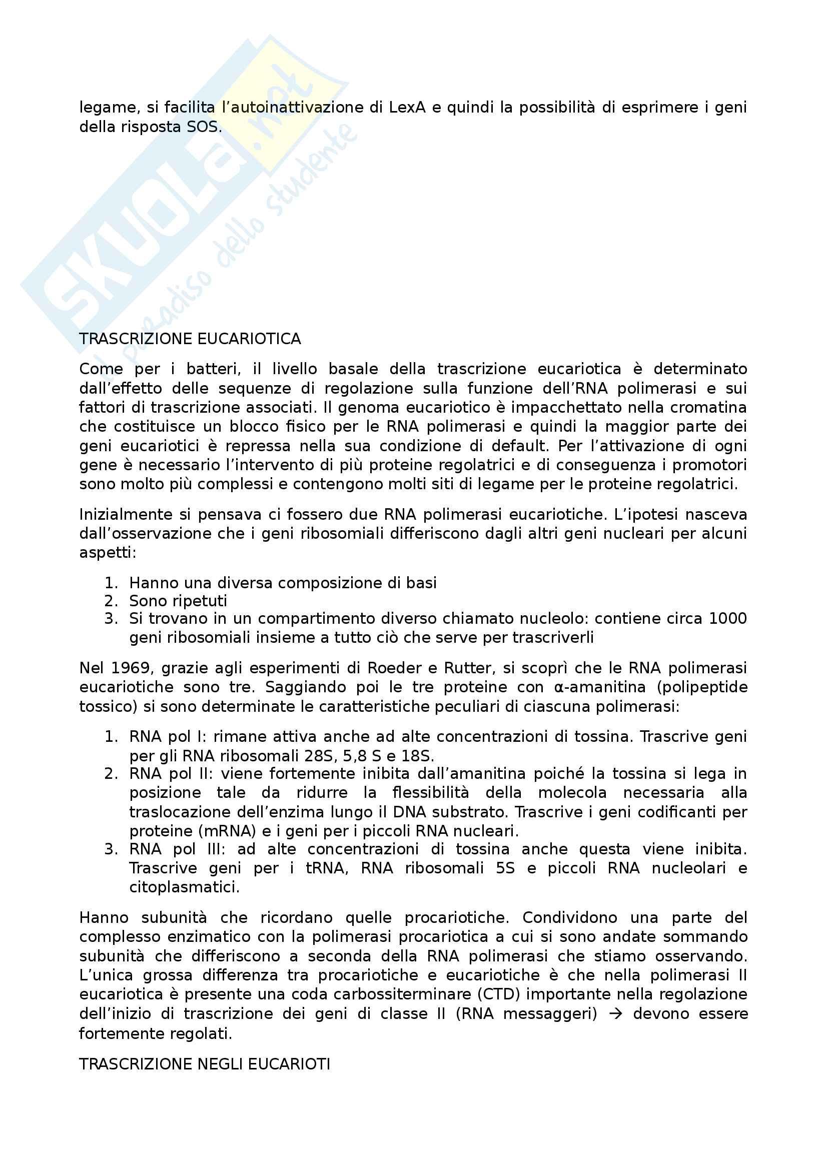 Biologia molecolare Pag. 61
