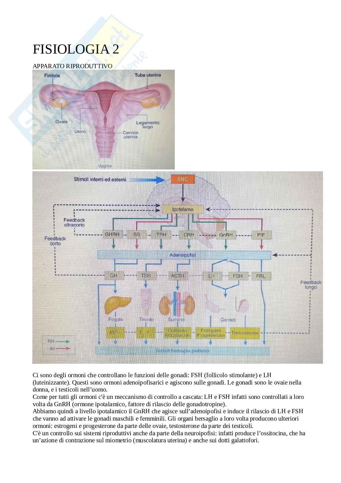 Fisiologia degli organi e degli apparati