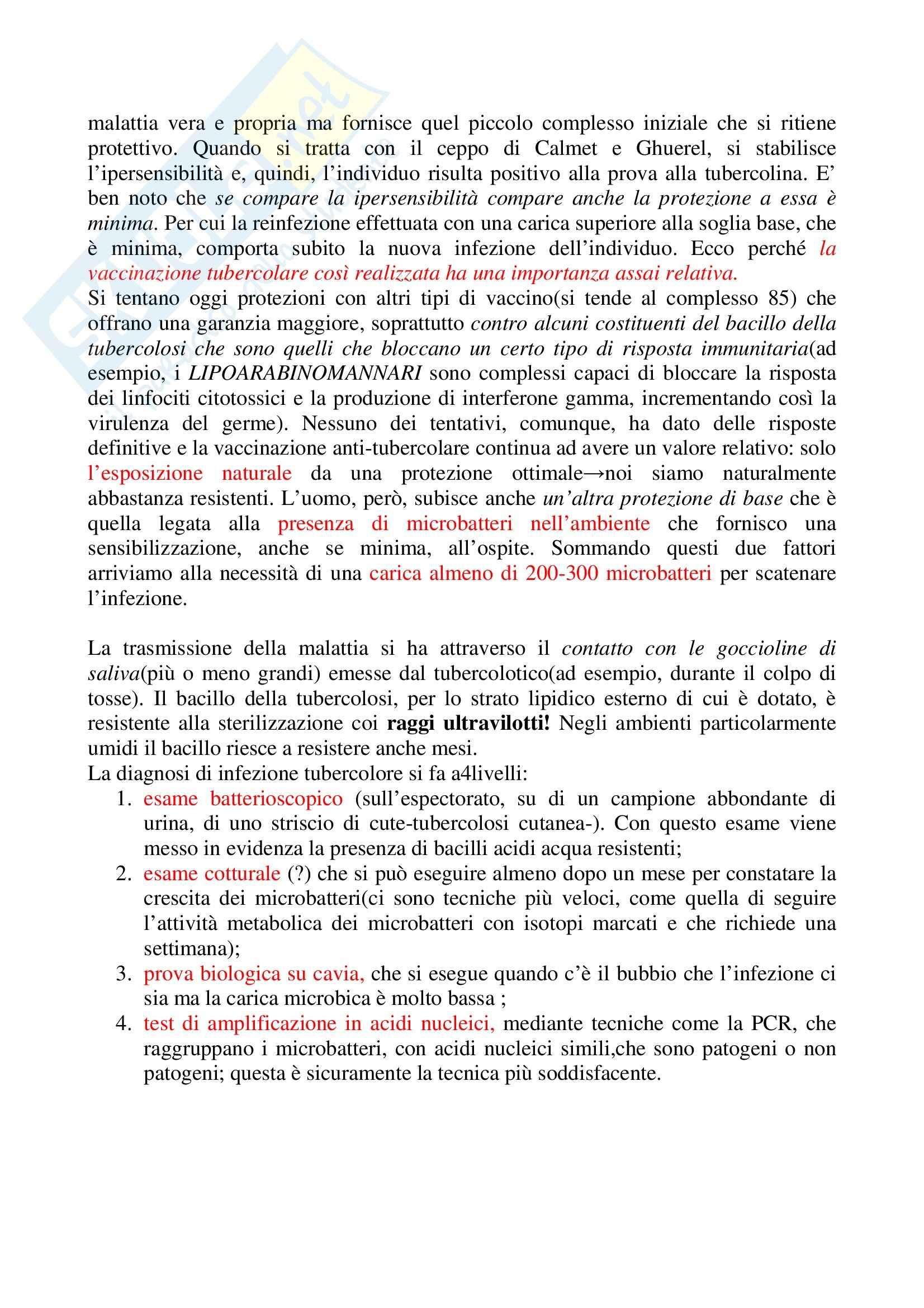 Microbiologia - tubercolosi Pag. 11