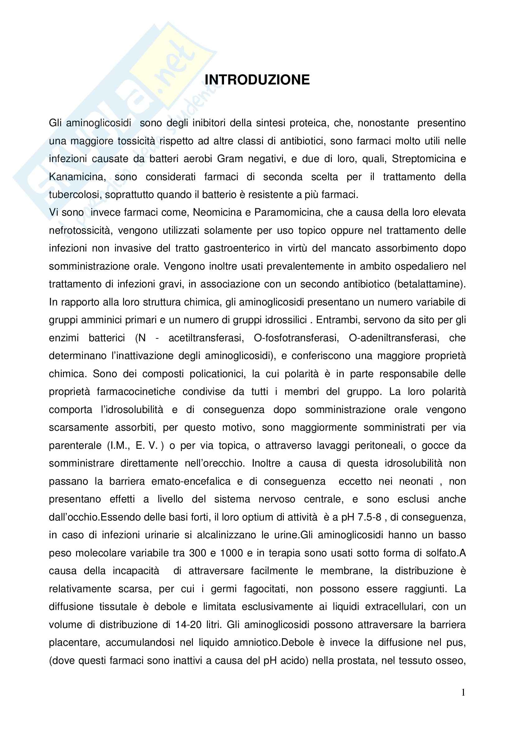 Chimica farmaceutica - aminoglicosidici