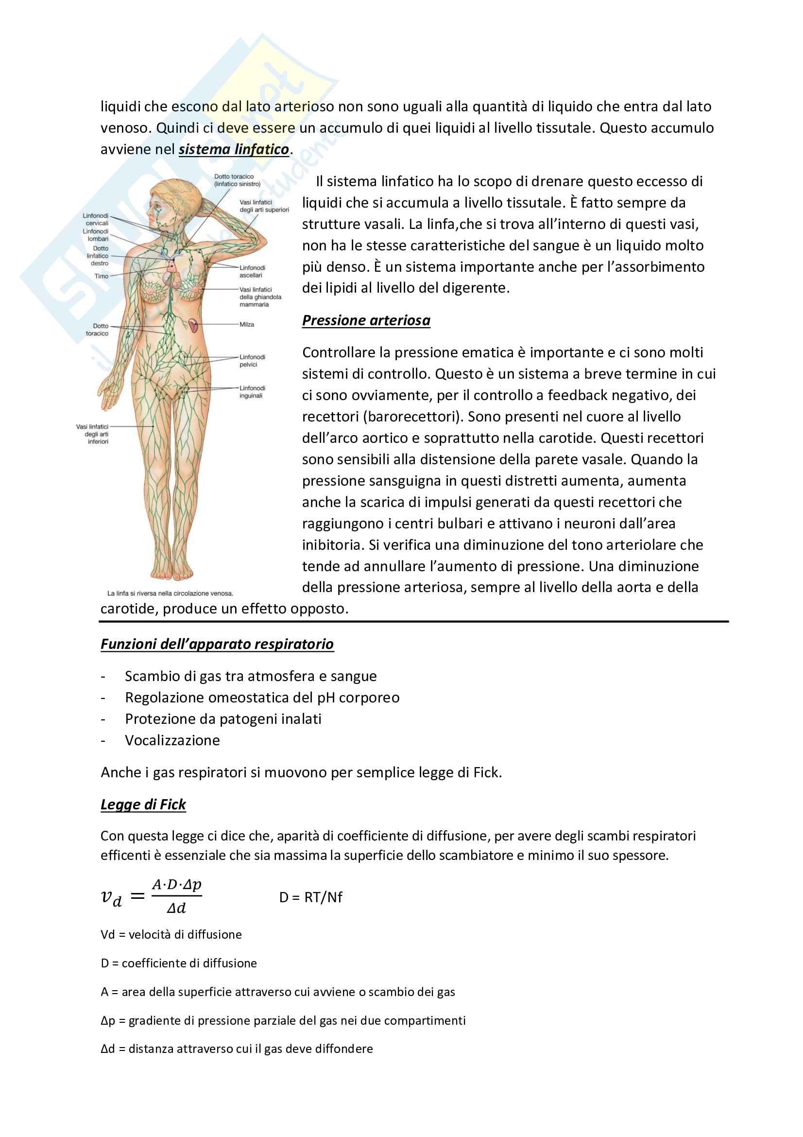 Appunti di Fisiologia generale, Mauro Giorgi Pag. 41