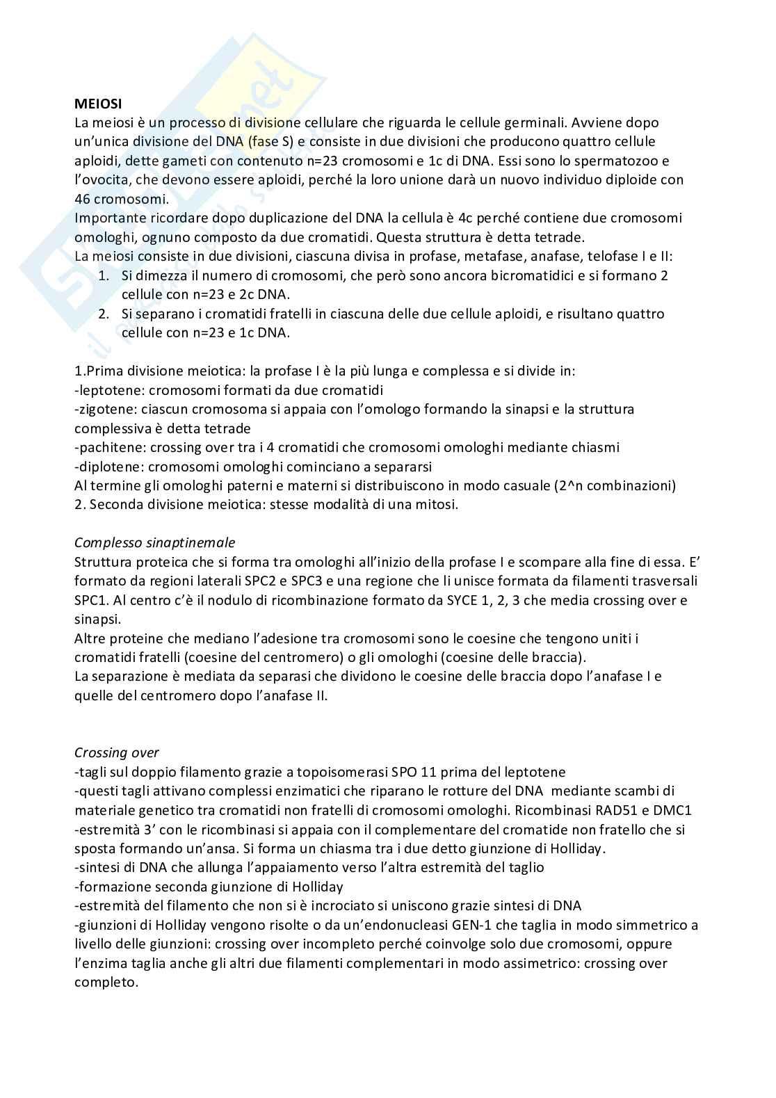 Riassunto embriologia, prof. De Felici, libro consigliato Embriologia Umana, De Felici et al, Piccin Pag. 1