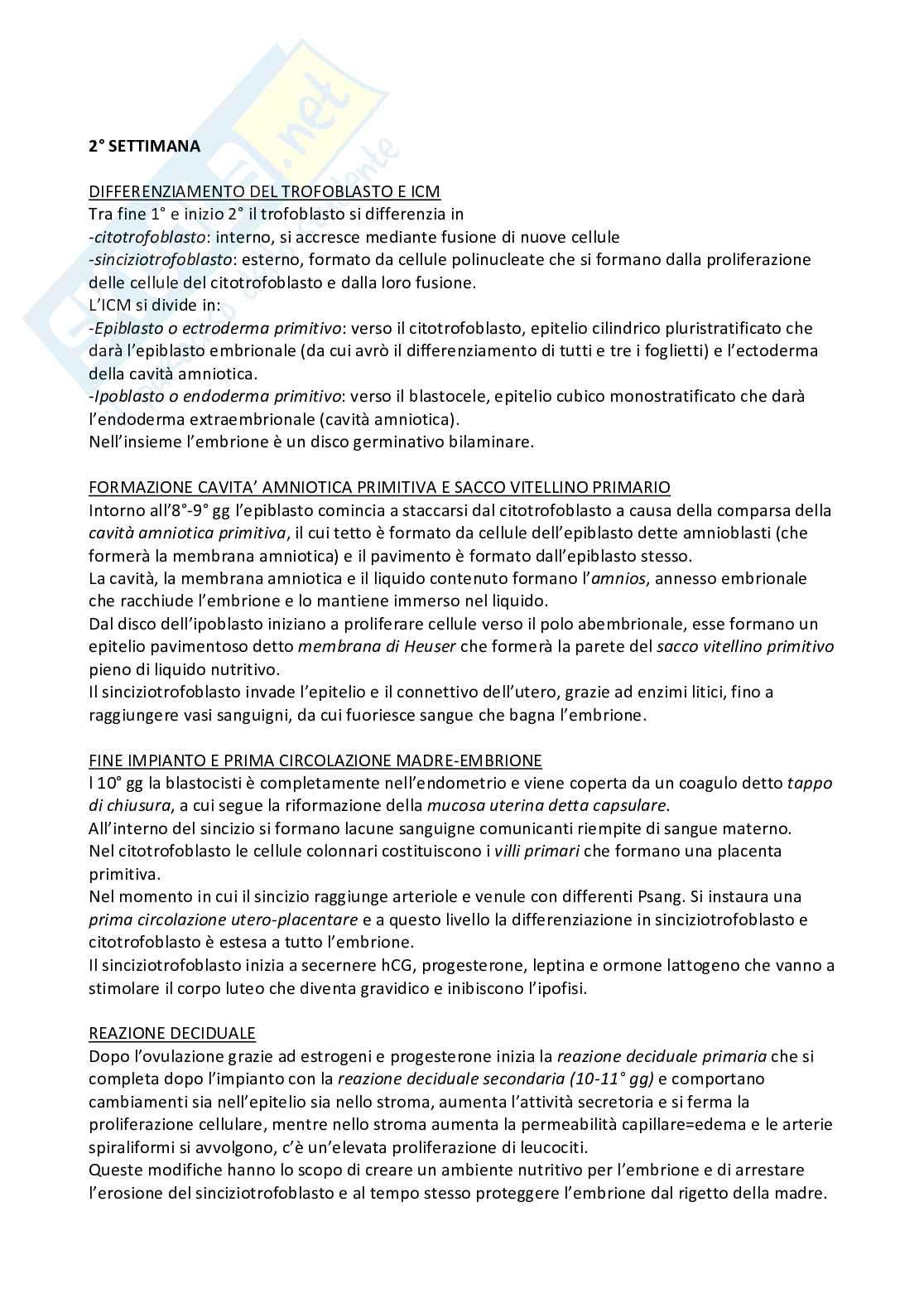 Riassunto embriologia, prof. De Felici, libro consigliato Embriologia Umana, De Felici et al, Piccin Pag. 11