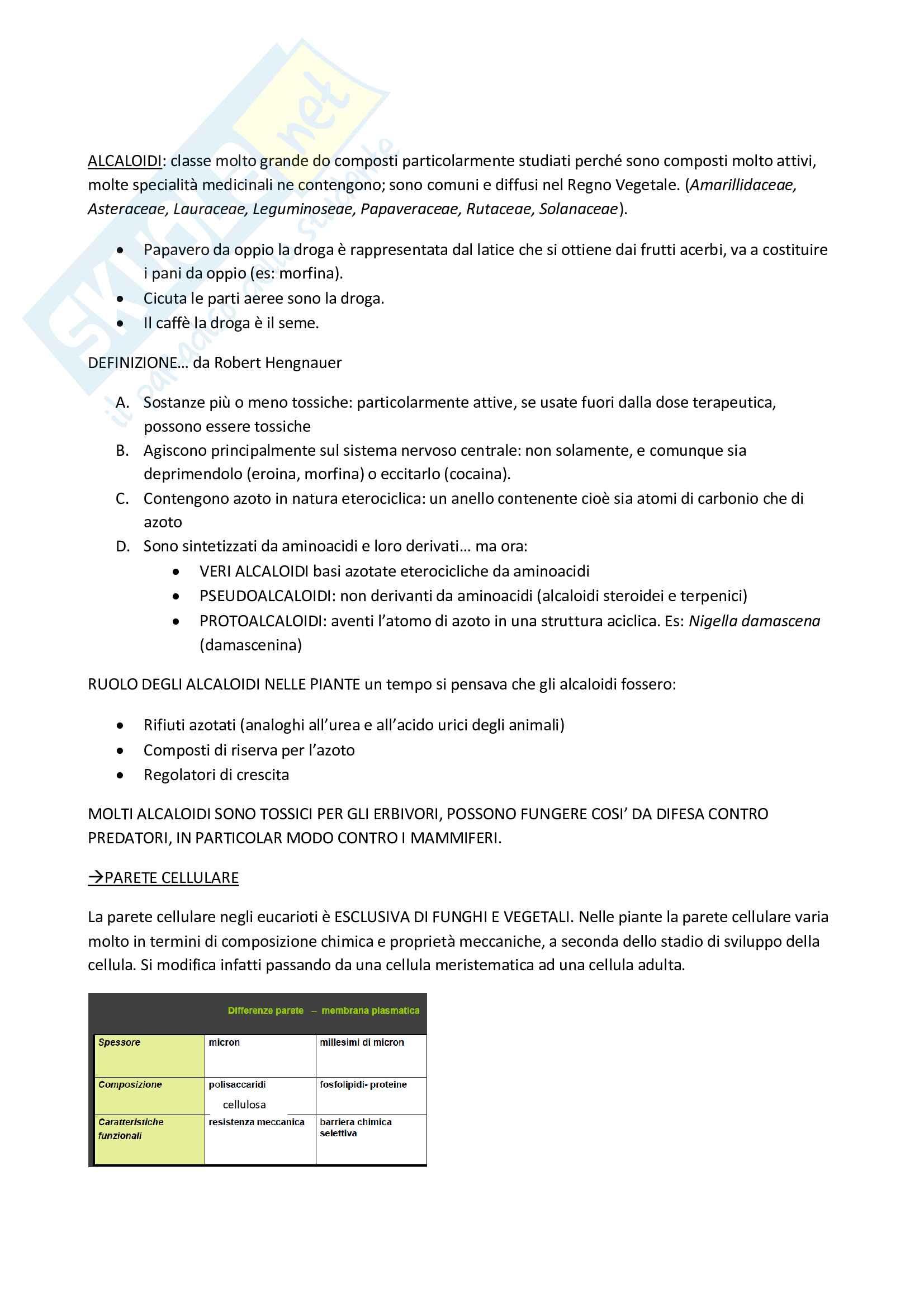Biologia vegetale 2 Pag. 16