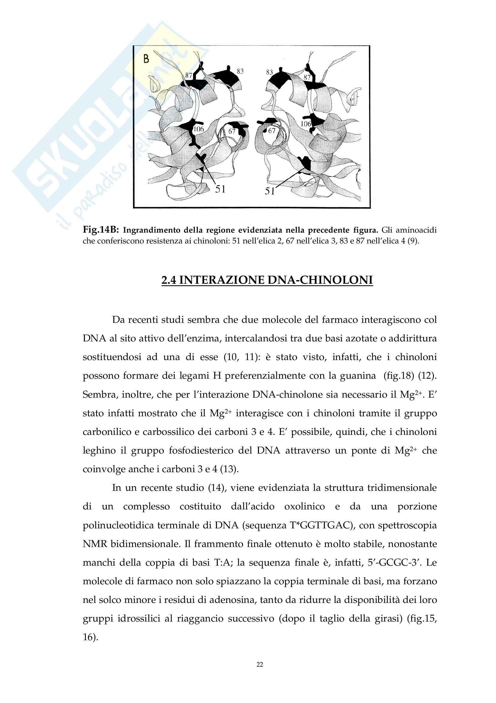 Chimica farmaceutica - i chinoloni Pag. 21