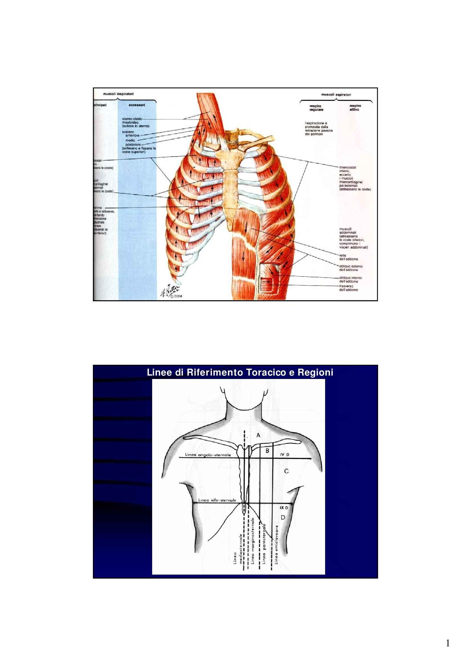 dispensa G. Vendemiale Metodologia Clinica