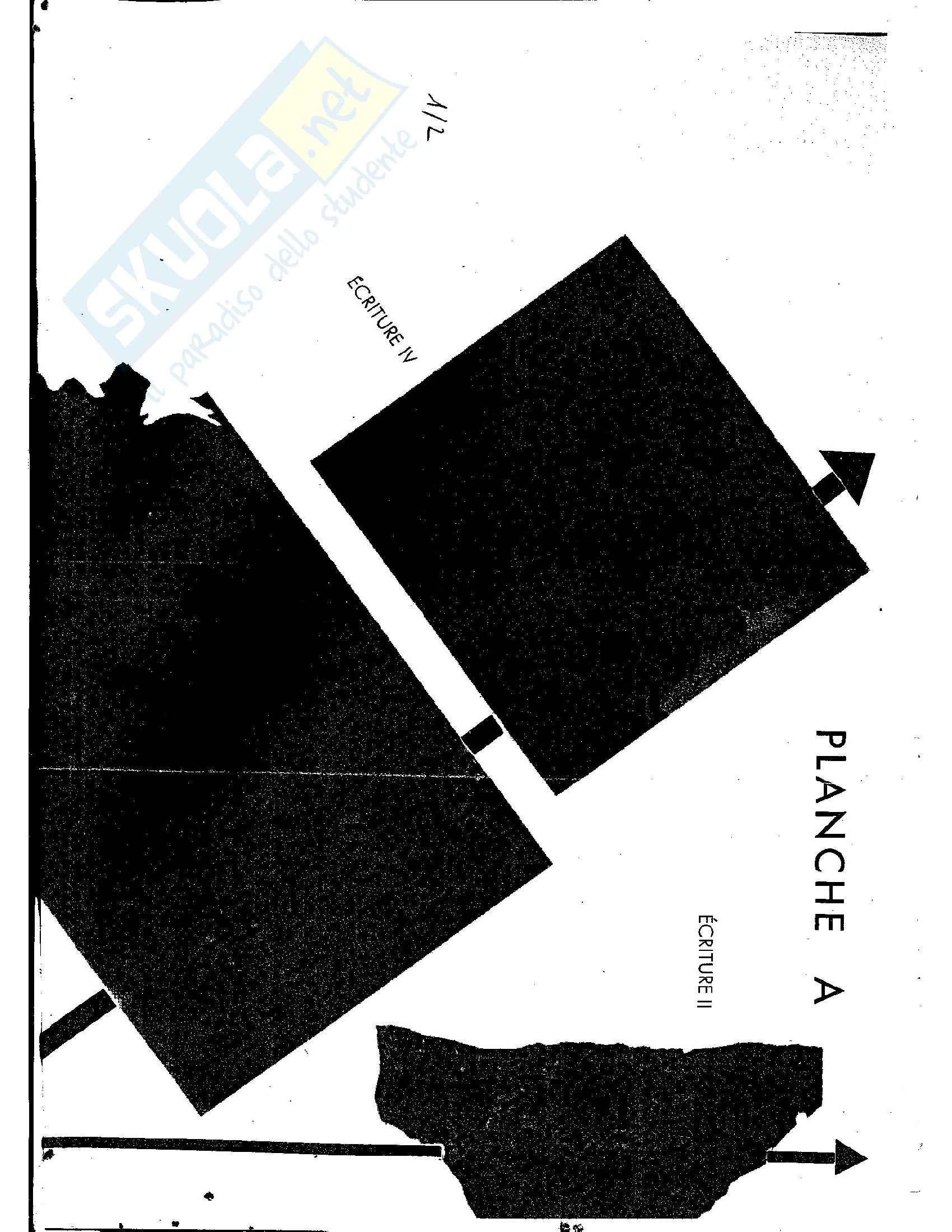 Tavole di esercitazione, Paleografia latina e diplomatica Pag. 21