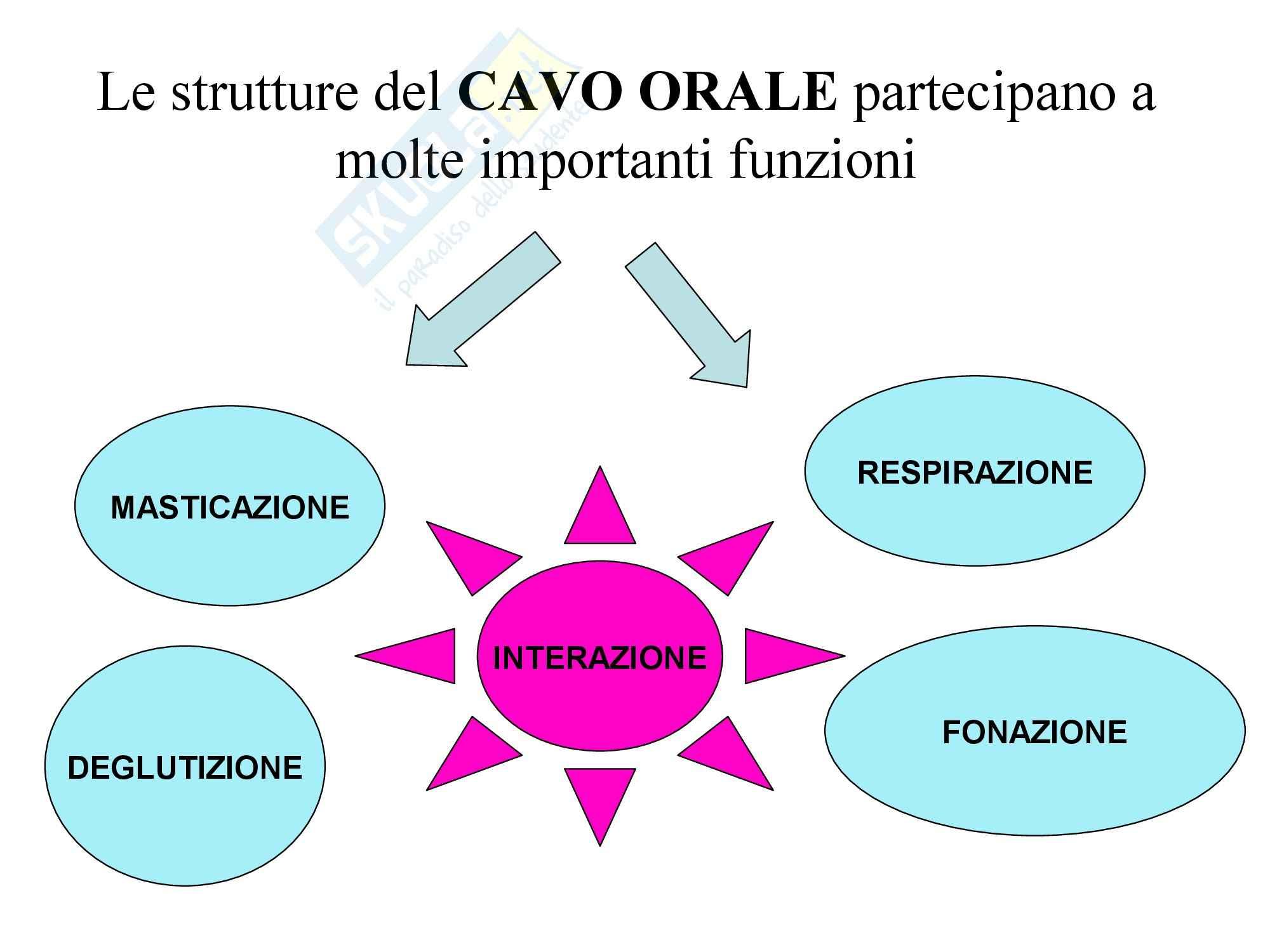 Infermieristica Clinica I – Cavo orale Pag. 2