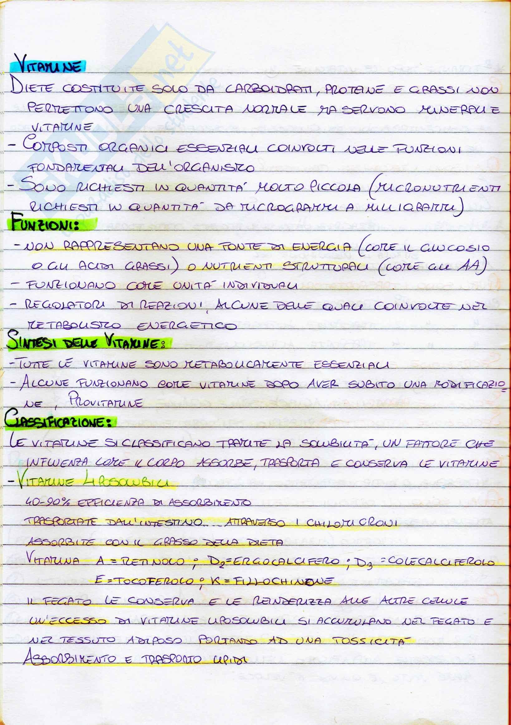 Riassunto esame Biochimica generale e umana, prof. Sabatini, libro consigliato Introduzione alla biochimica di Lehninger Pag. 16