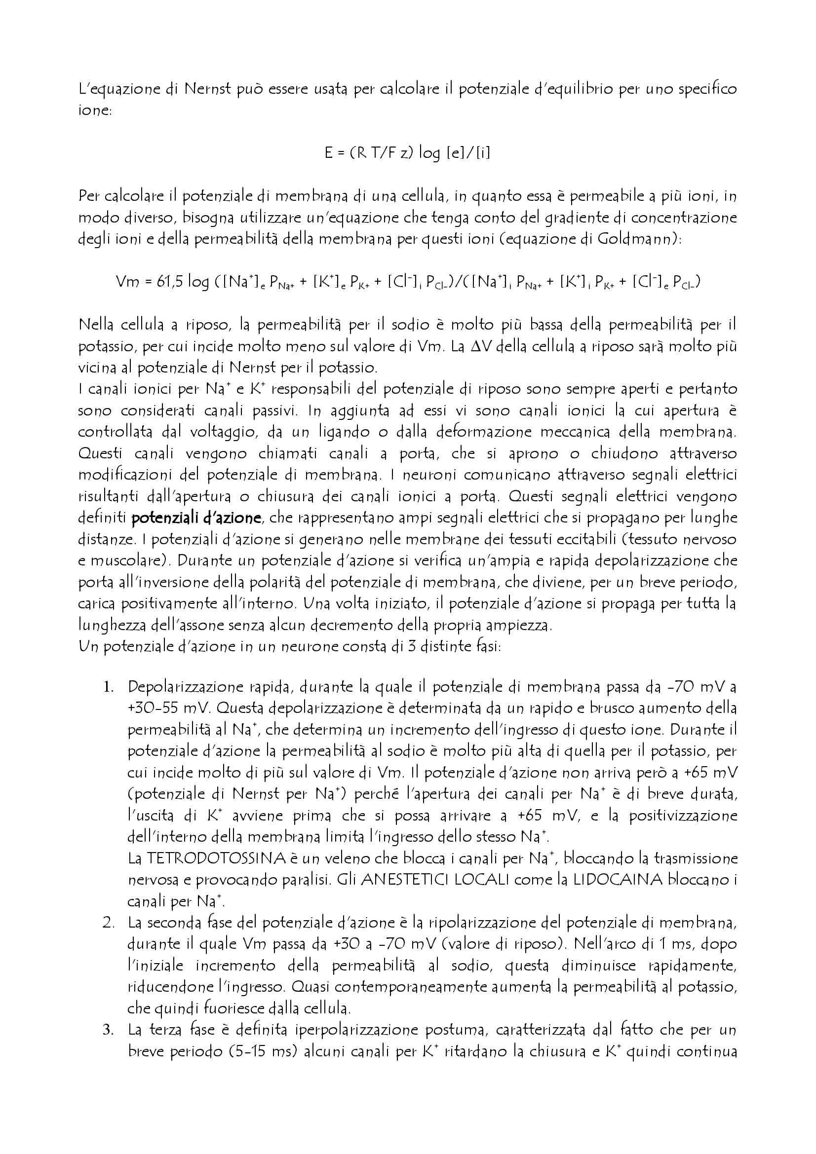 Fisiologia - Sistema Nervoso Pag. 6