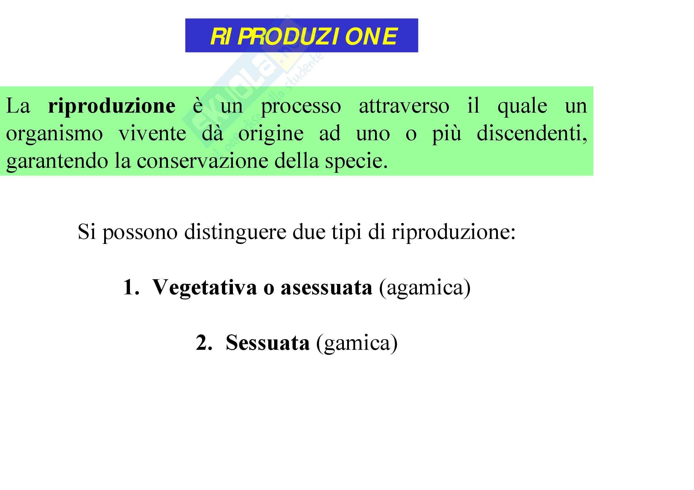 Biologia – Lezione 9 - Slides