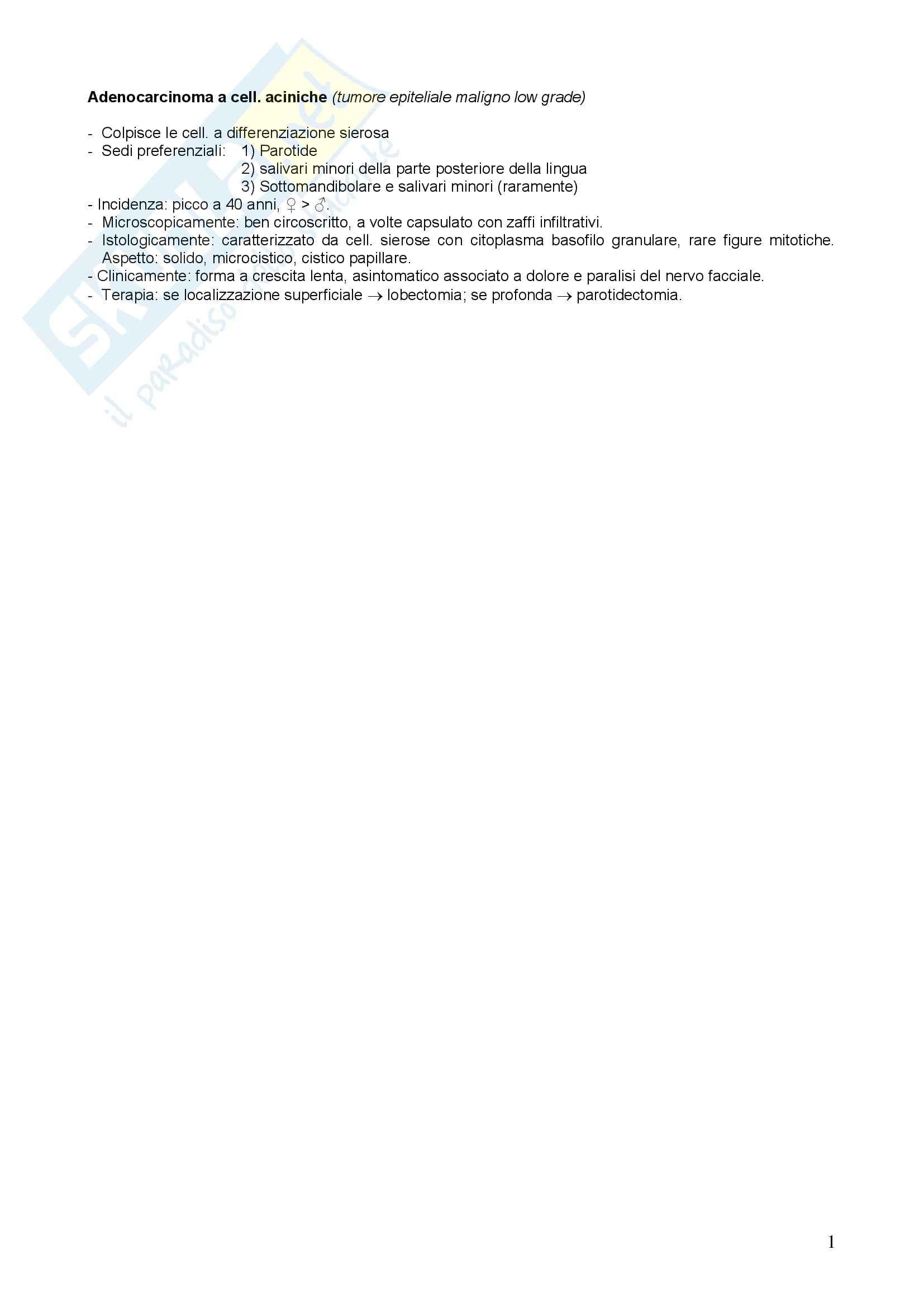 Anatomia patologica - adenocarcinoma a cellule aciniche