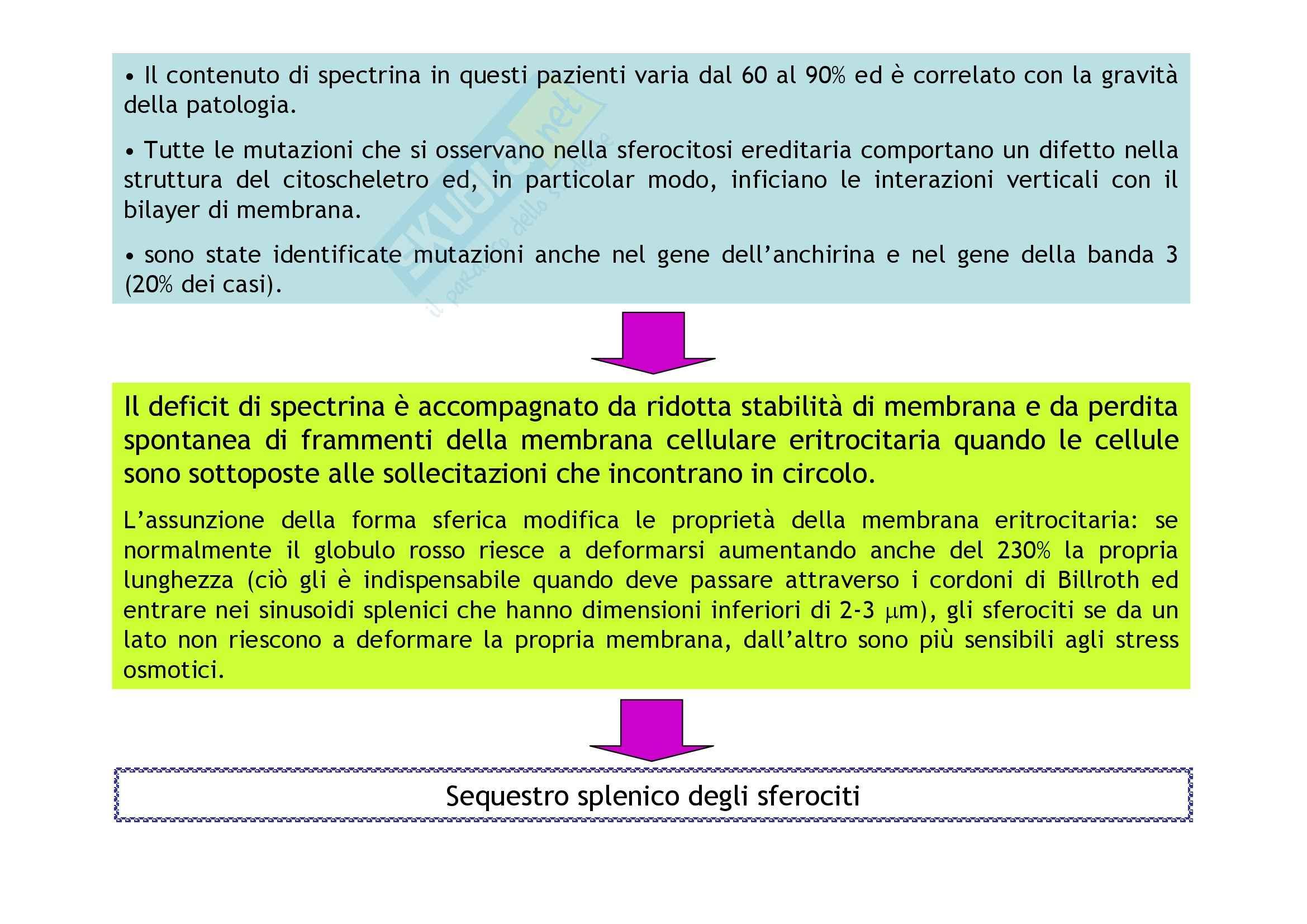 Patologia e fisiopatologia generale – Anemie Pag. 6