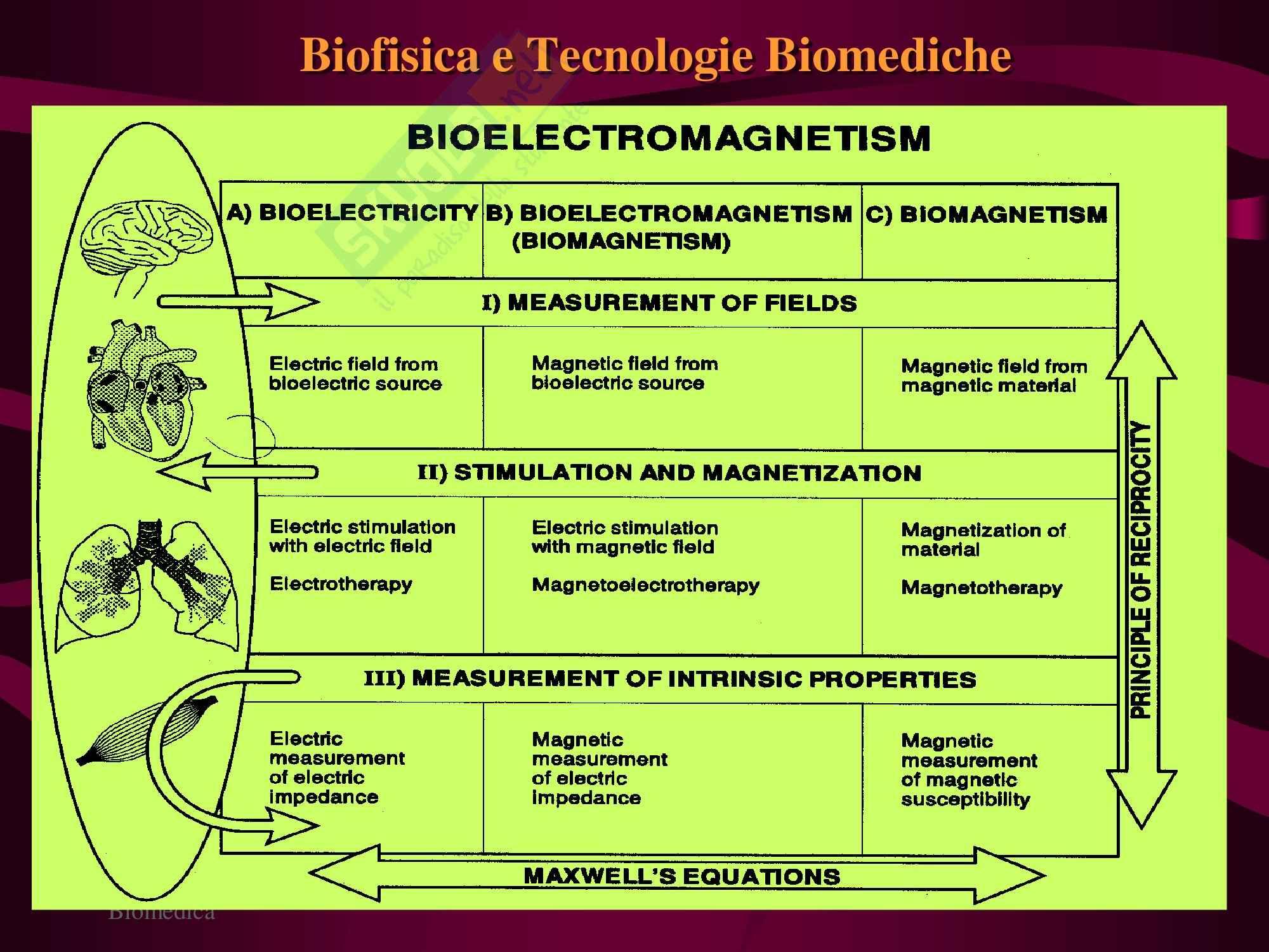 Strumentazione Biomedica - Biofisica