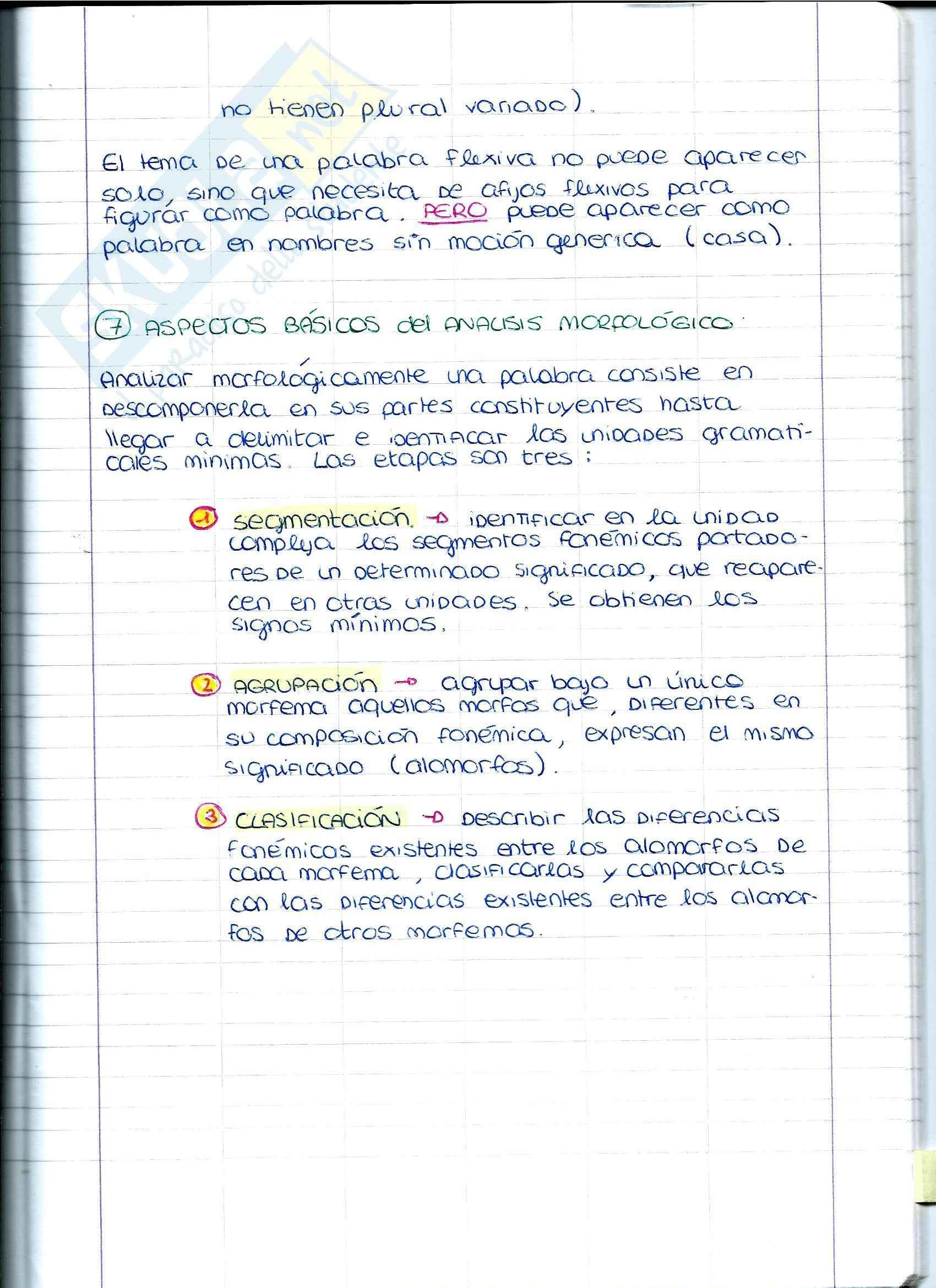 Spagnolo - Partes de la morfologia Pag. 6