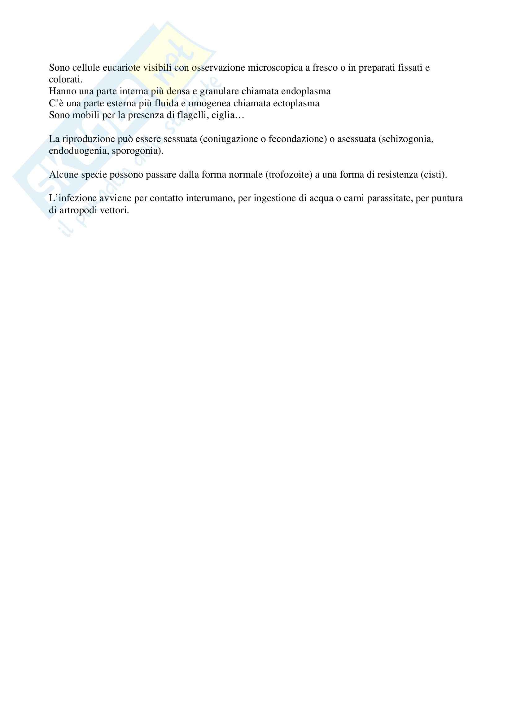 Microbiologia generale e lab. - la protozoologia