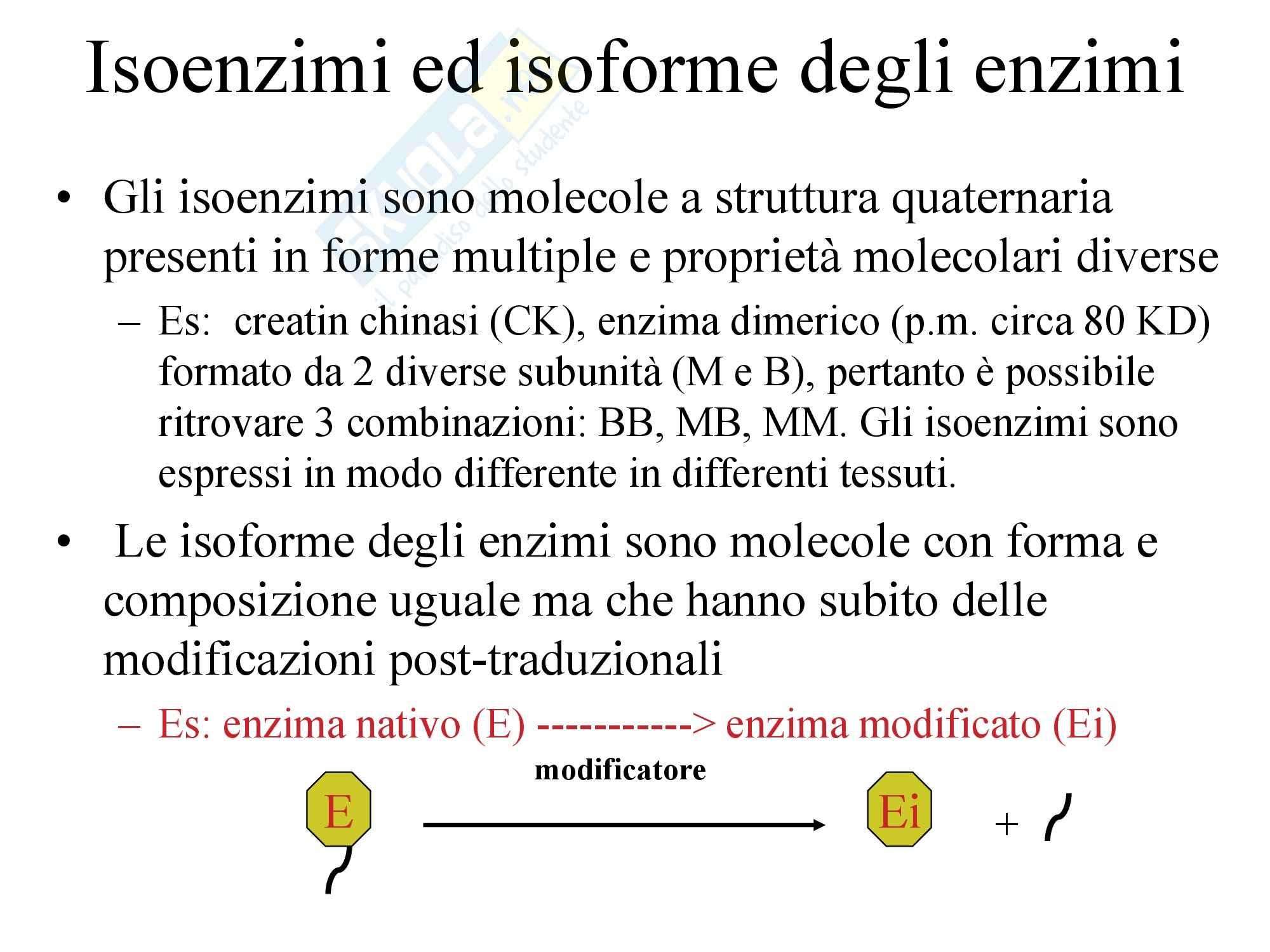 Fegato e Bile - Funzioni epatiche Pag. 16