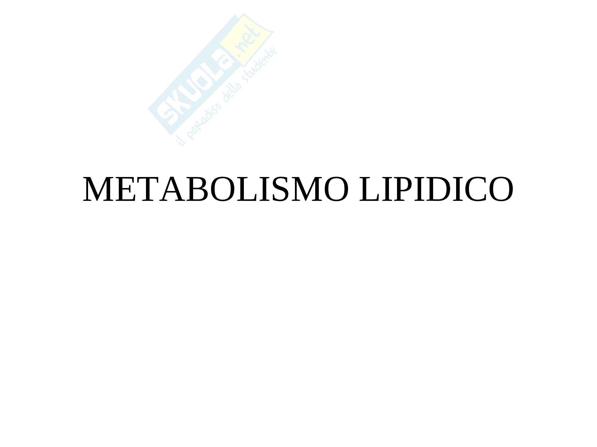 Biochimica - metabolismo lipidico