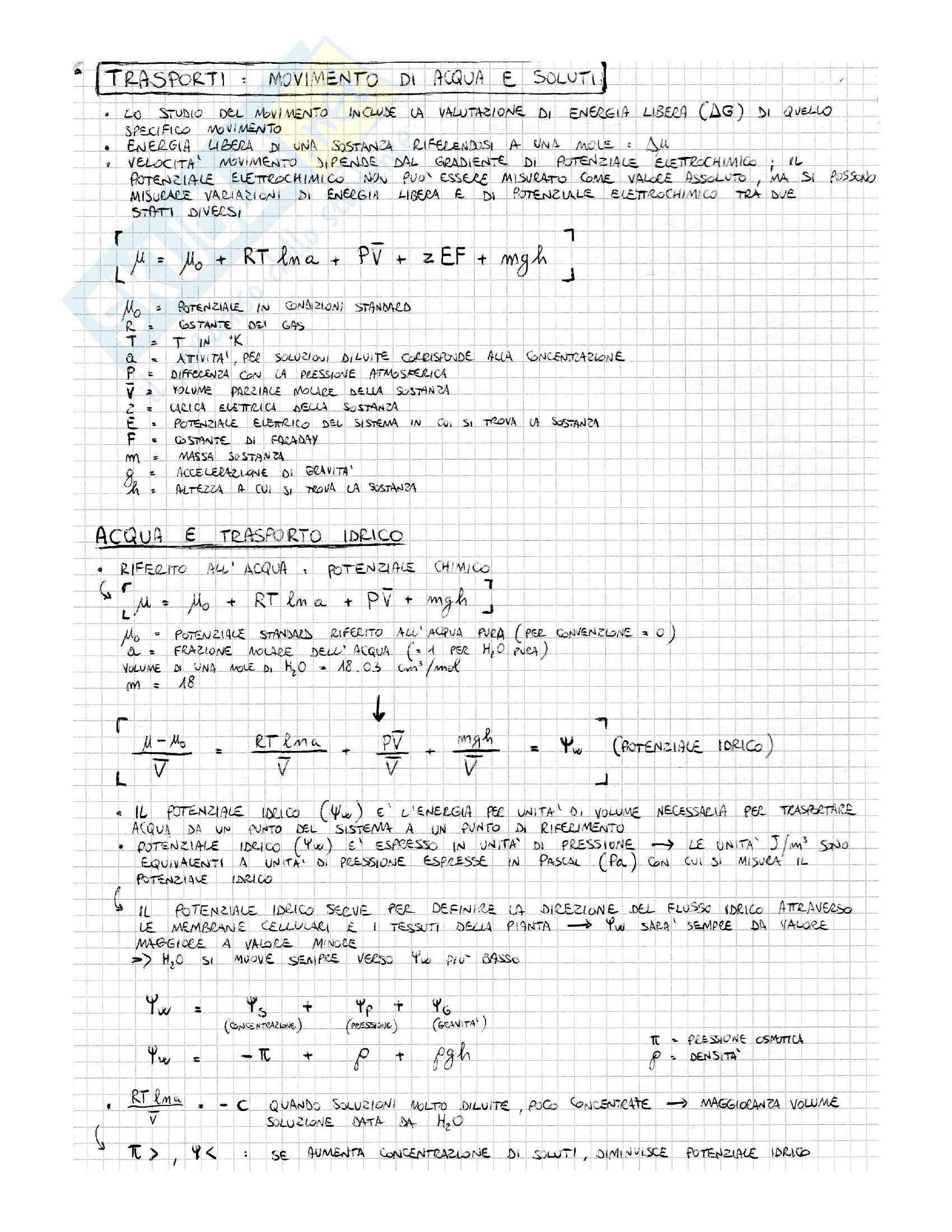 Lezioni, Fisiologia Vegetale Pag. 6