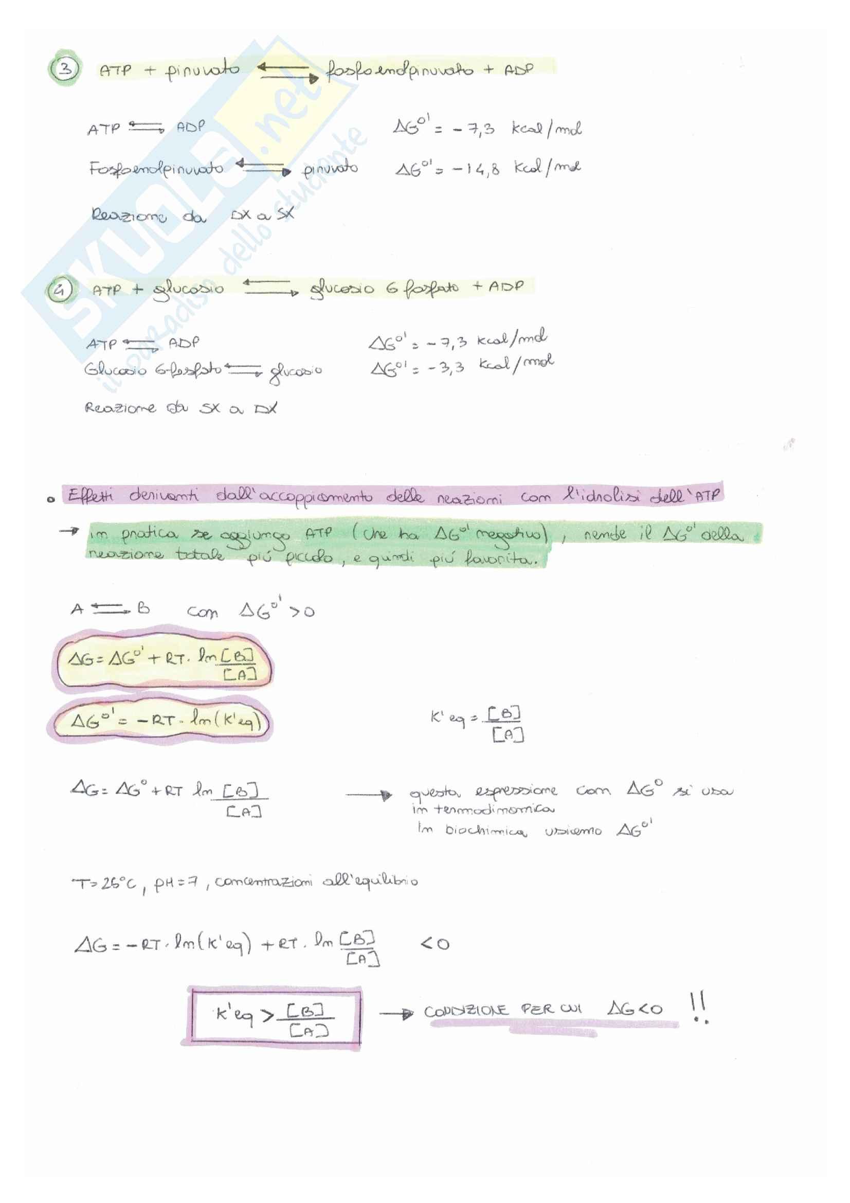Bioingegneria chimica: esercitazioni e temi d'esame