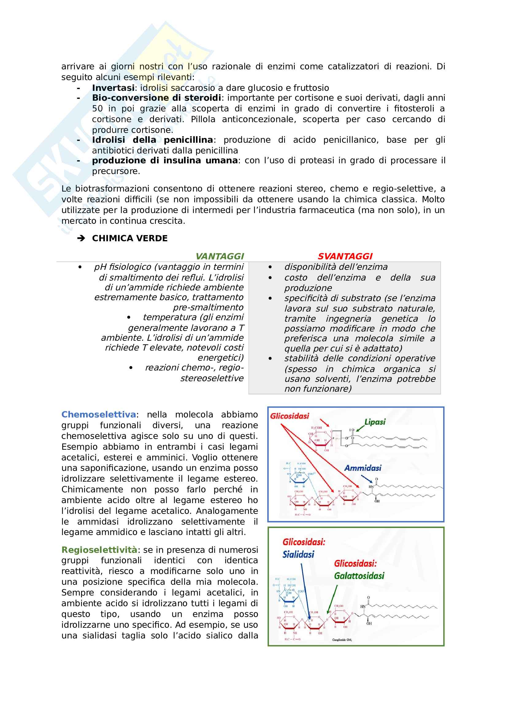 Chimica organica applicata alle biotecnologie Pag. 2