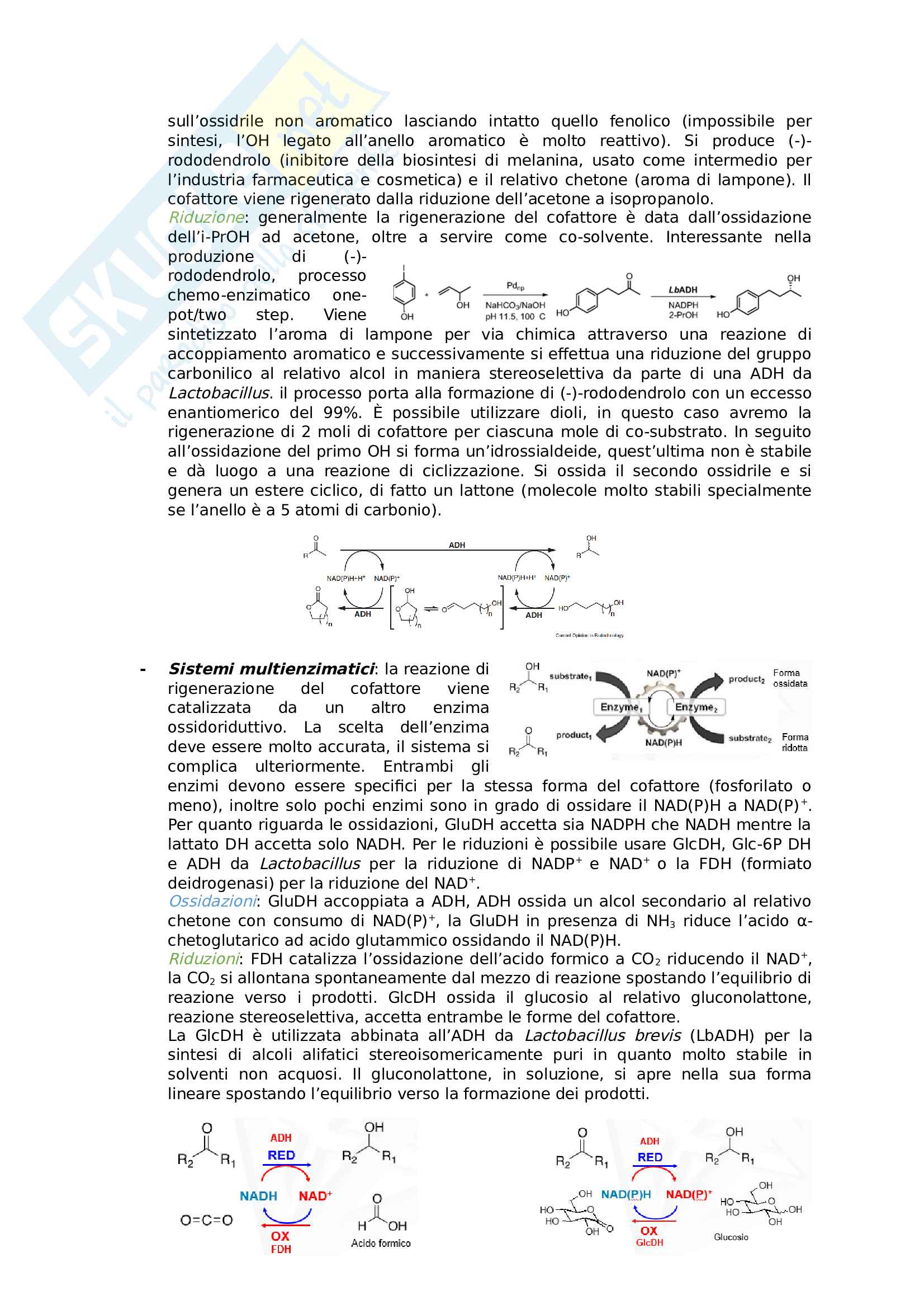 Chimica organica applicata alle biotecnologie Pag. 21