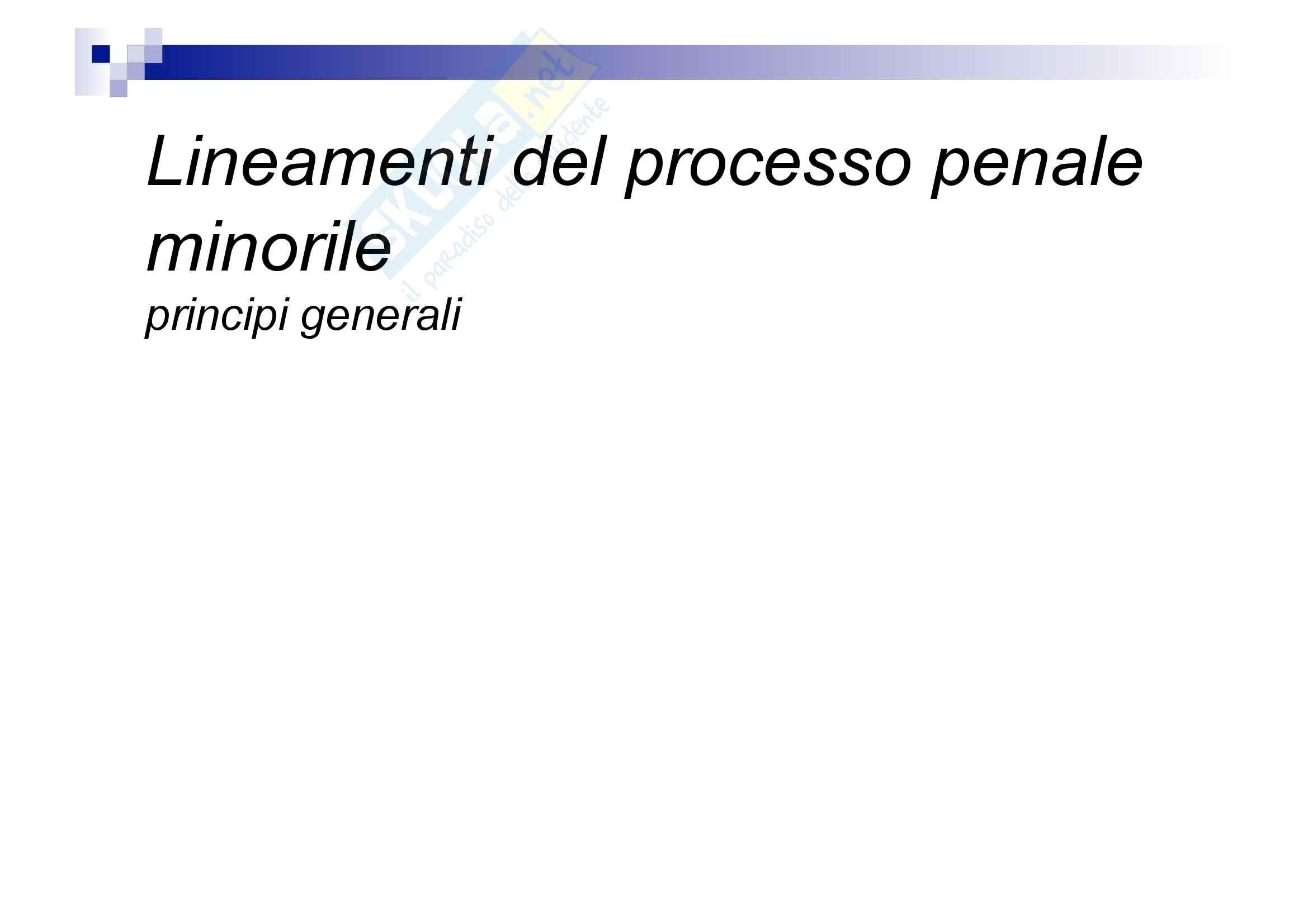 Processo penale minorile - elementi del processo penale minorile