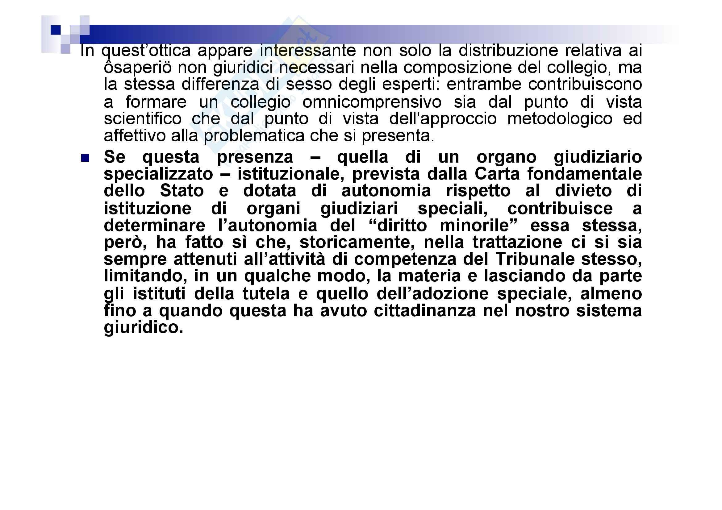 Processo penale minorile - elementi del processo penale minorile Pag. 26