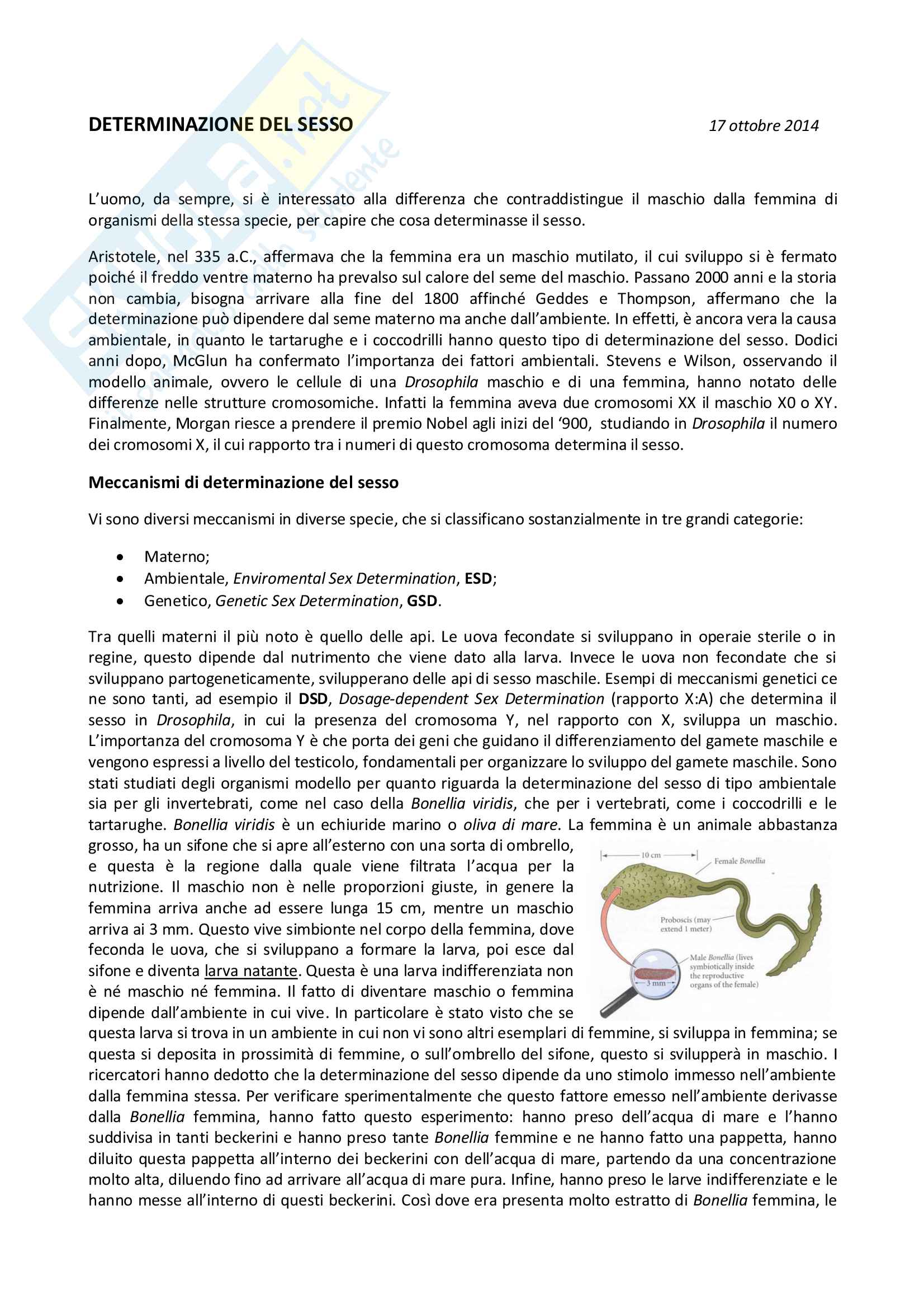 Biologia cellulare Pag. 21
