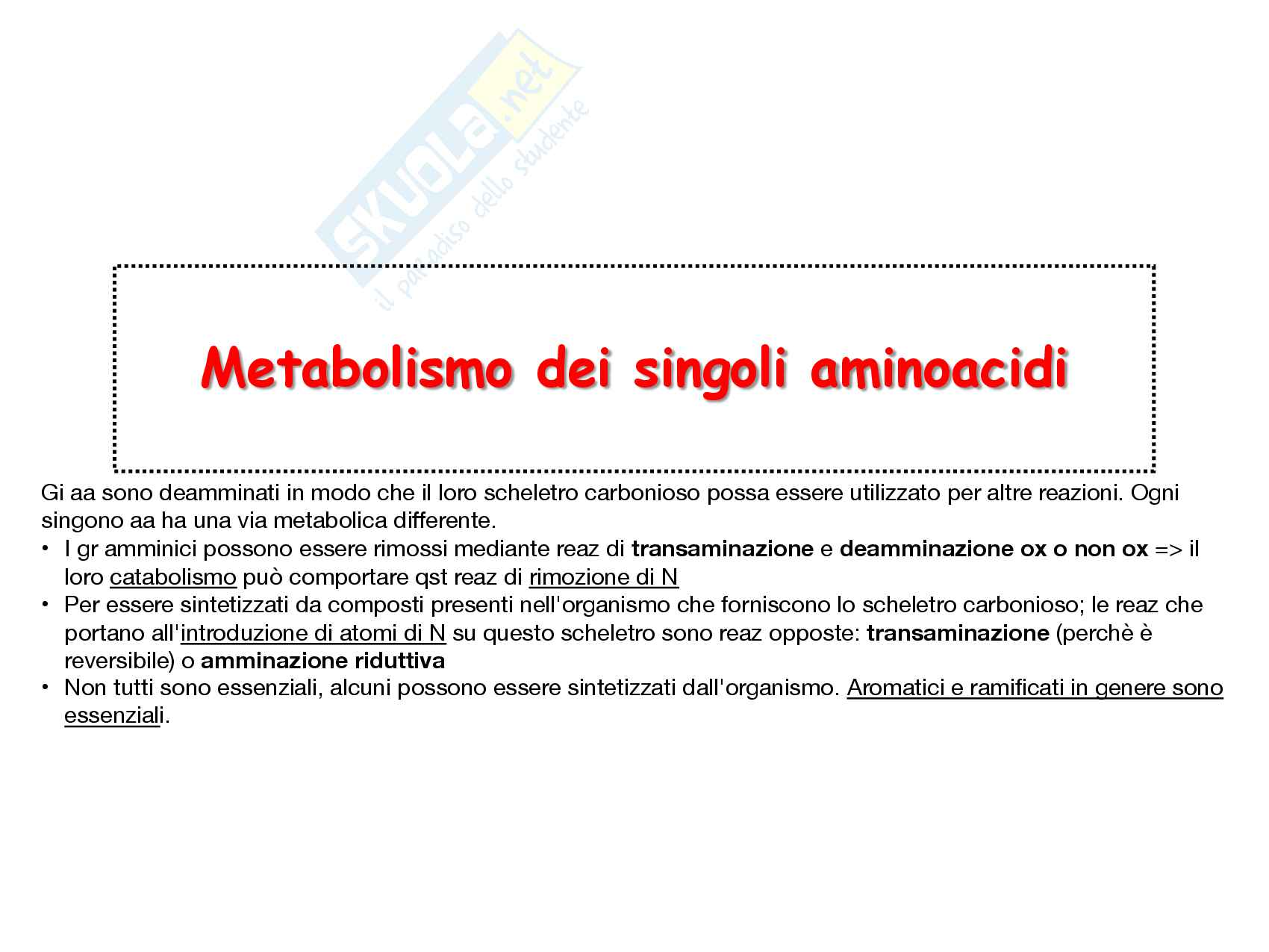 25 Metabolismo dei singoli aminoacidi