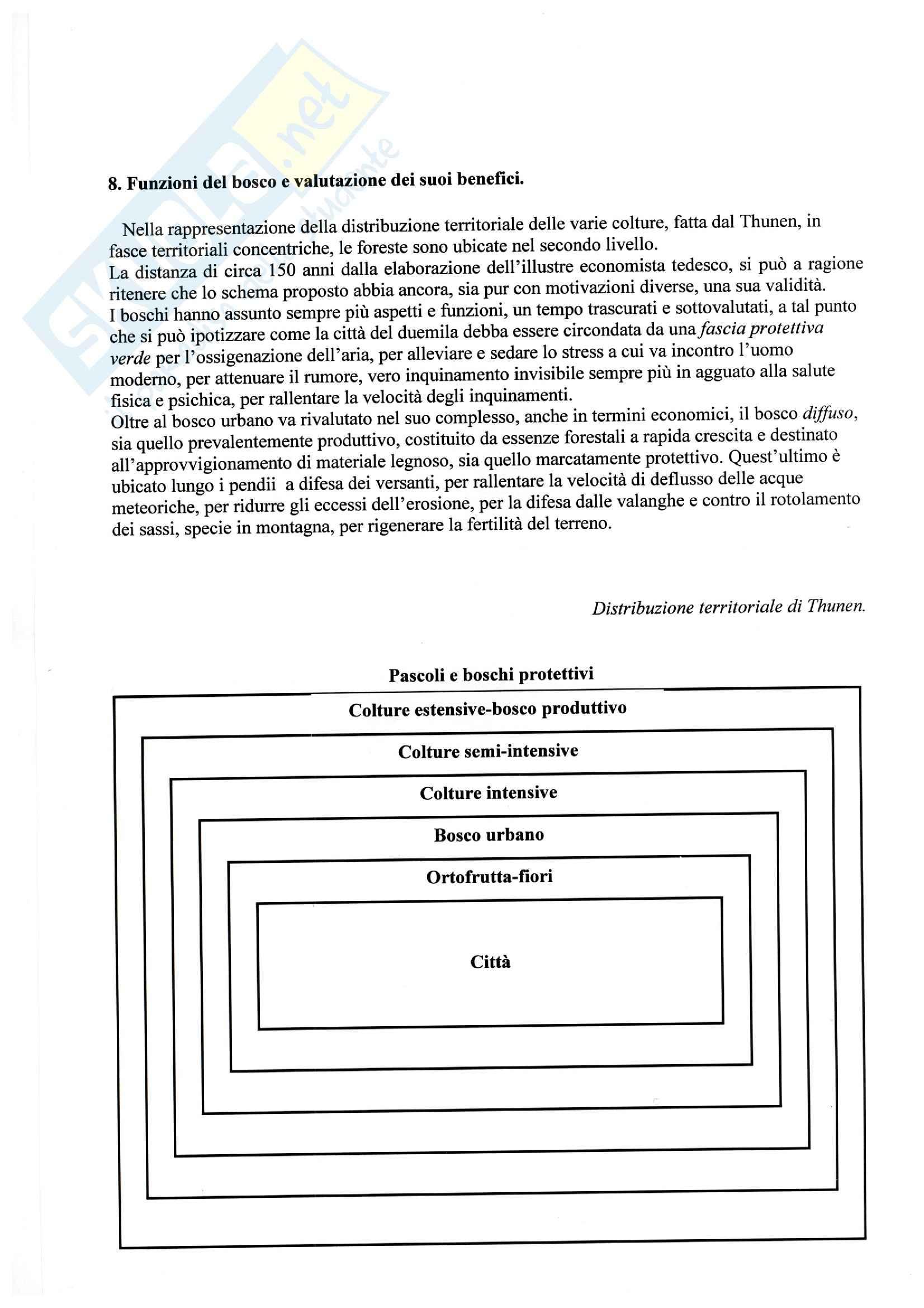 Selvicoltura - gestione terreno boscoso Pag. 6