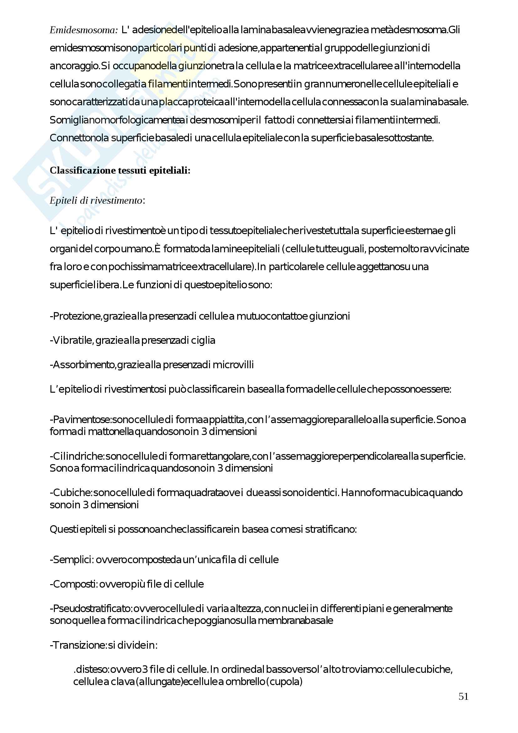 Appunti di Citologia e istologia (prof. Bacci, prof. Vanzi) Pag. 51