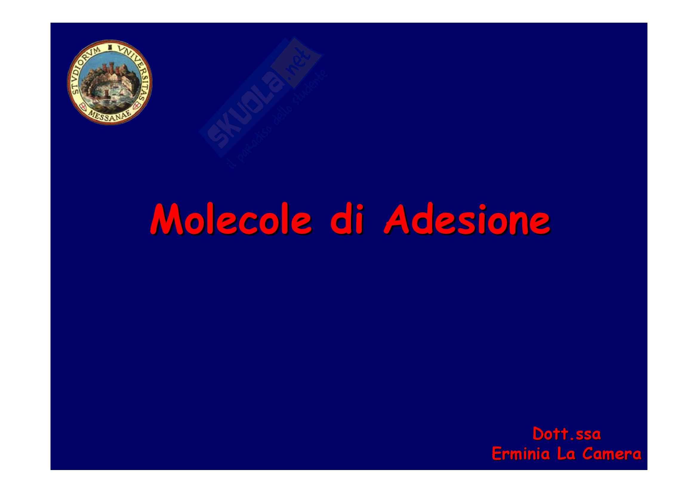 Patologia generale - molecole di adesione