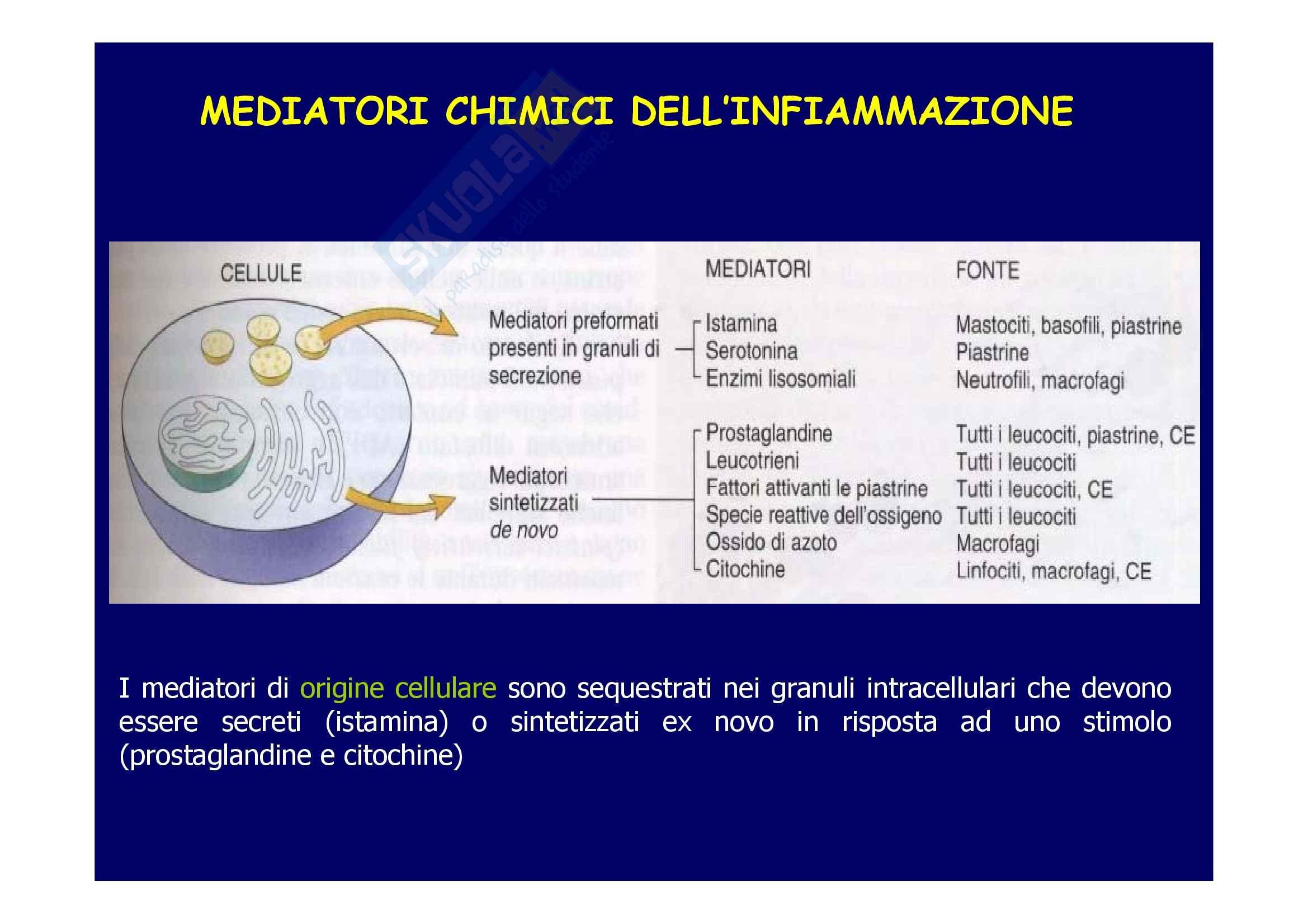 Patologia generale - molecole di adesione Pag. 11