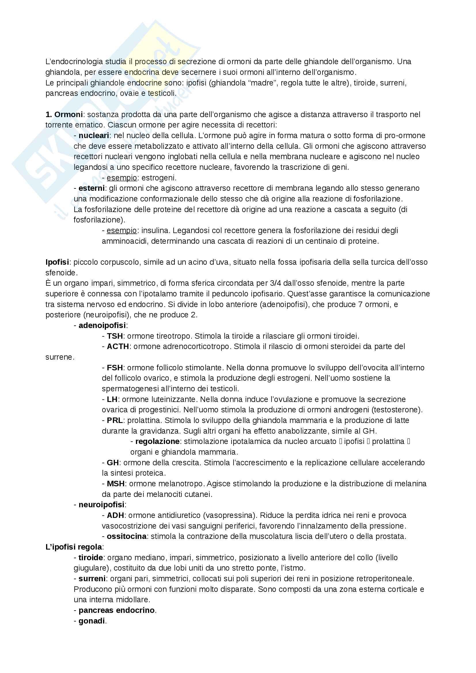 Appunti e slide - Medicina sportiva