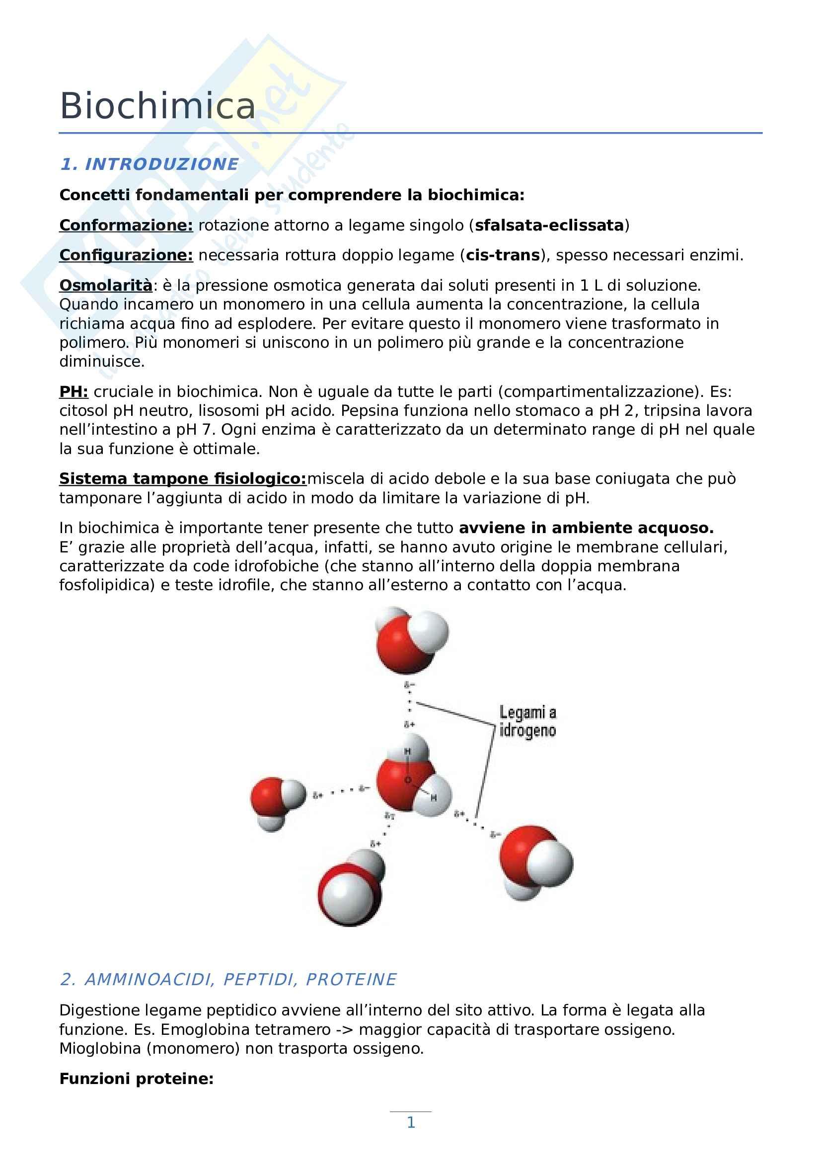 Appunti di Biochimica - Prof Pinotti