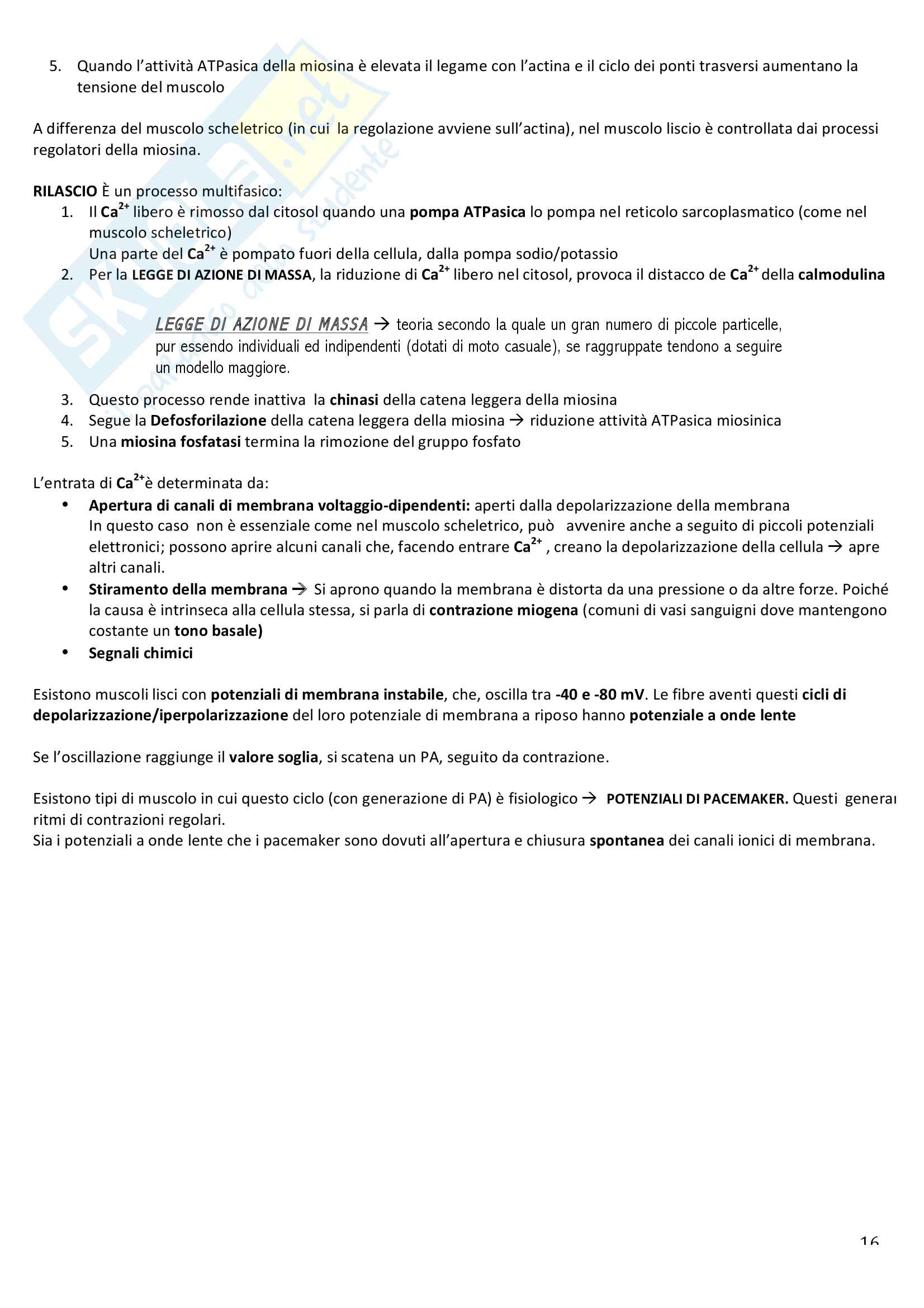 Appunti di fisiologia umana Pag. 16