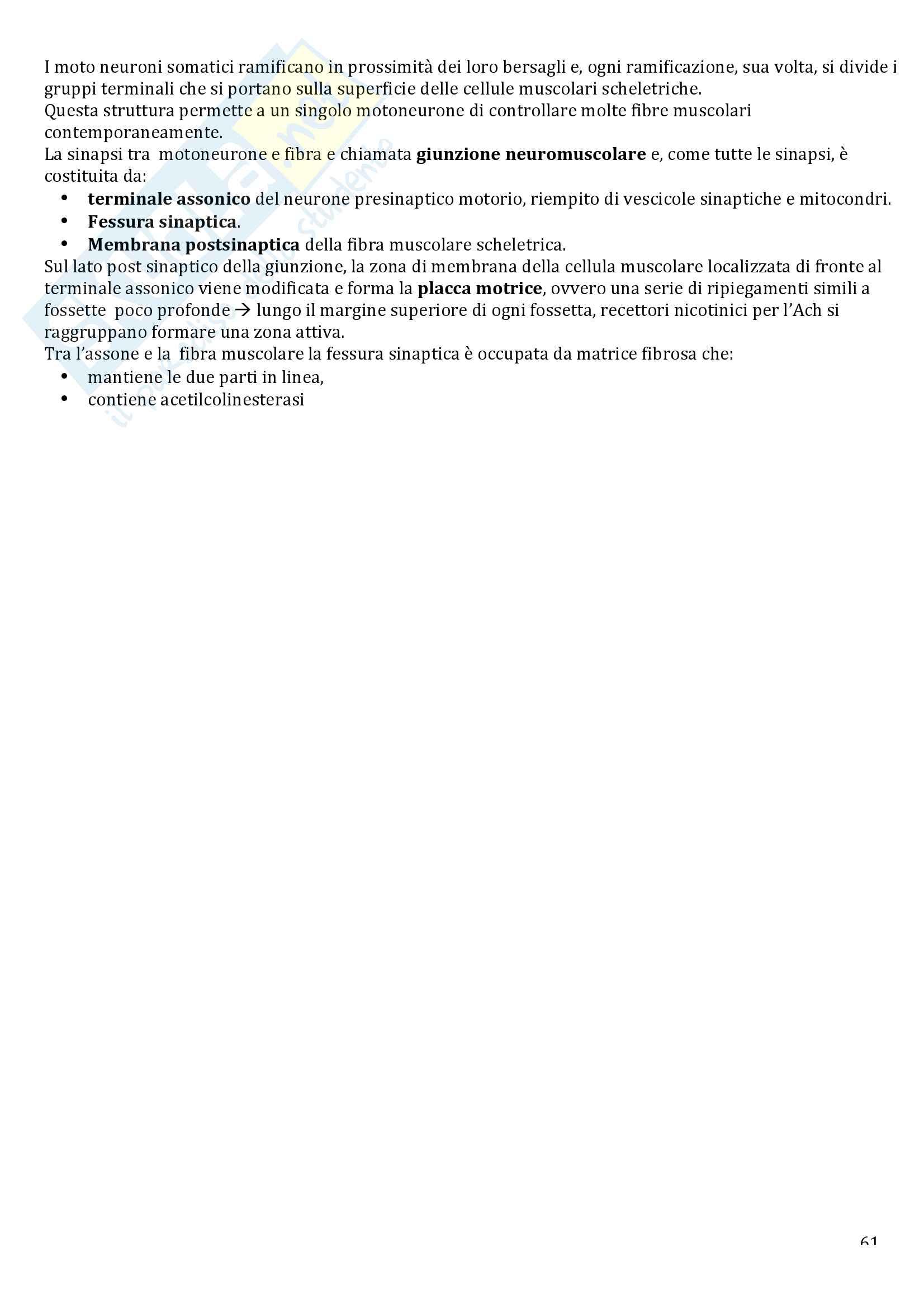 Appunti di fisiologia umana Pag. 61