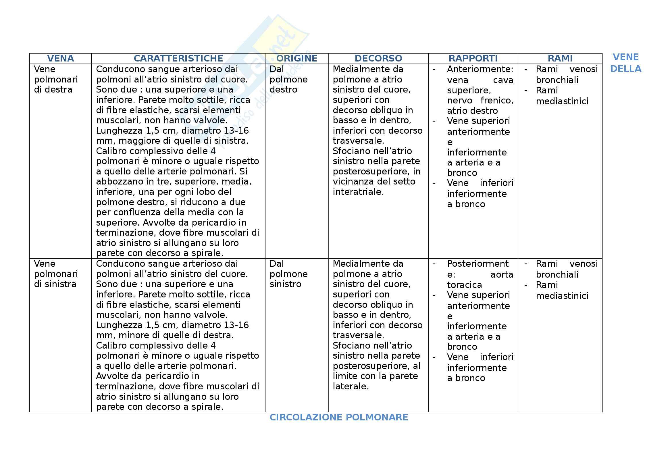 Vene - Tabella delle vene divise per sedi. Indicazione di posizione e caratteristiche Pag. 2