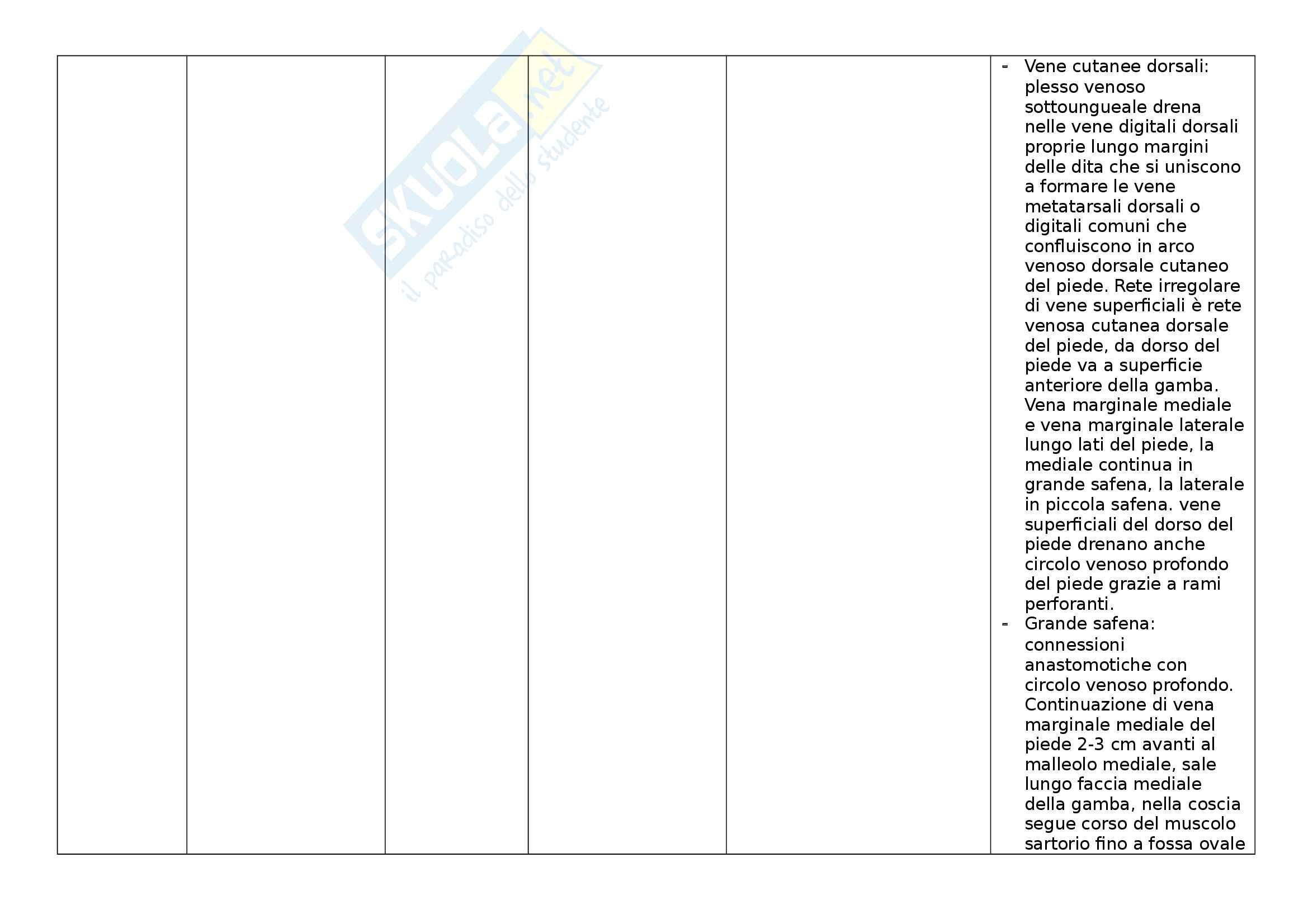 Vene - Tabella delle vene divise per sedi. Indicazione di posizione e caratteristiche Pag. 31