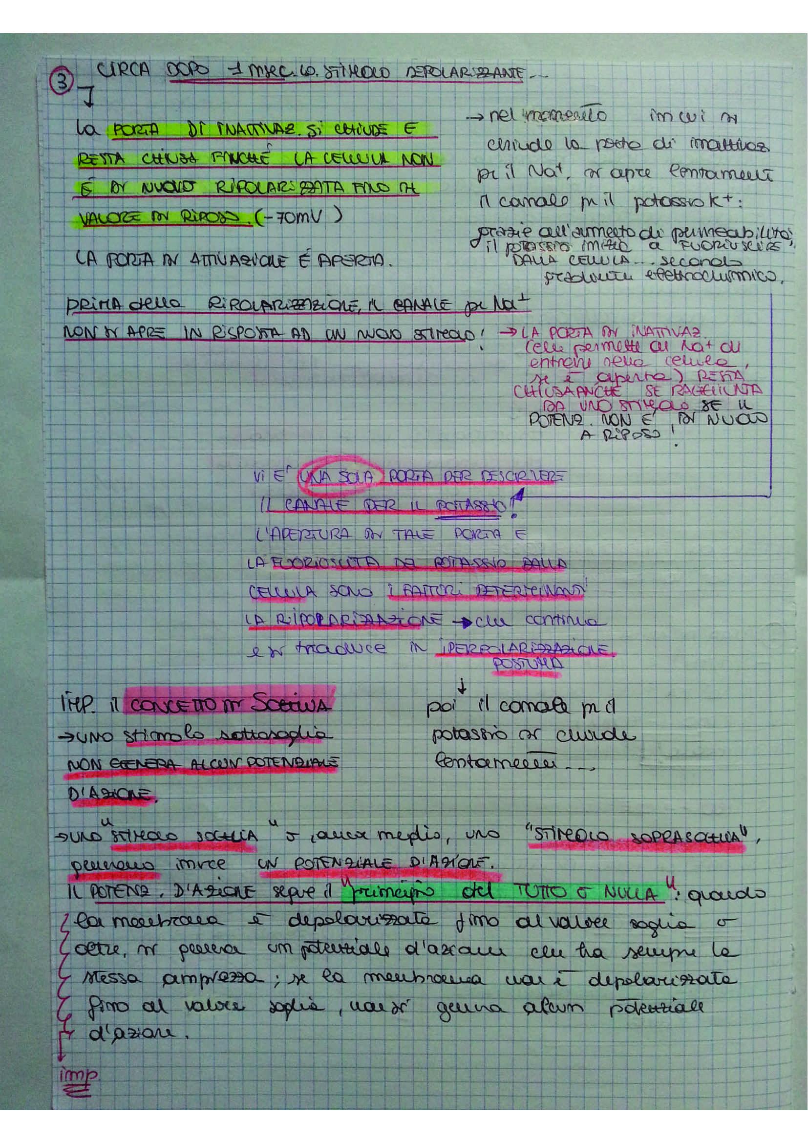 Riassunto esame Fisiologia umana, prof. D'Ascanio, libro consigliato Fisiologia, Stanfield, Germann (sistema nervoso) Pag. 26