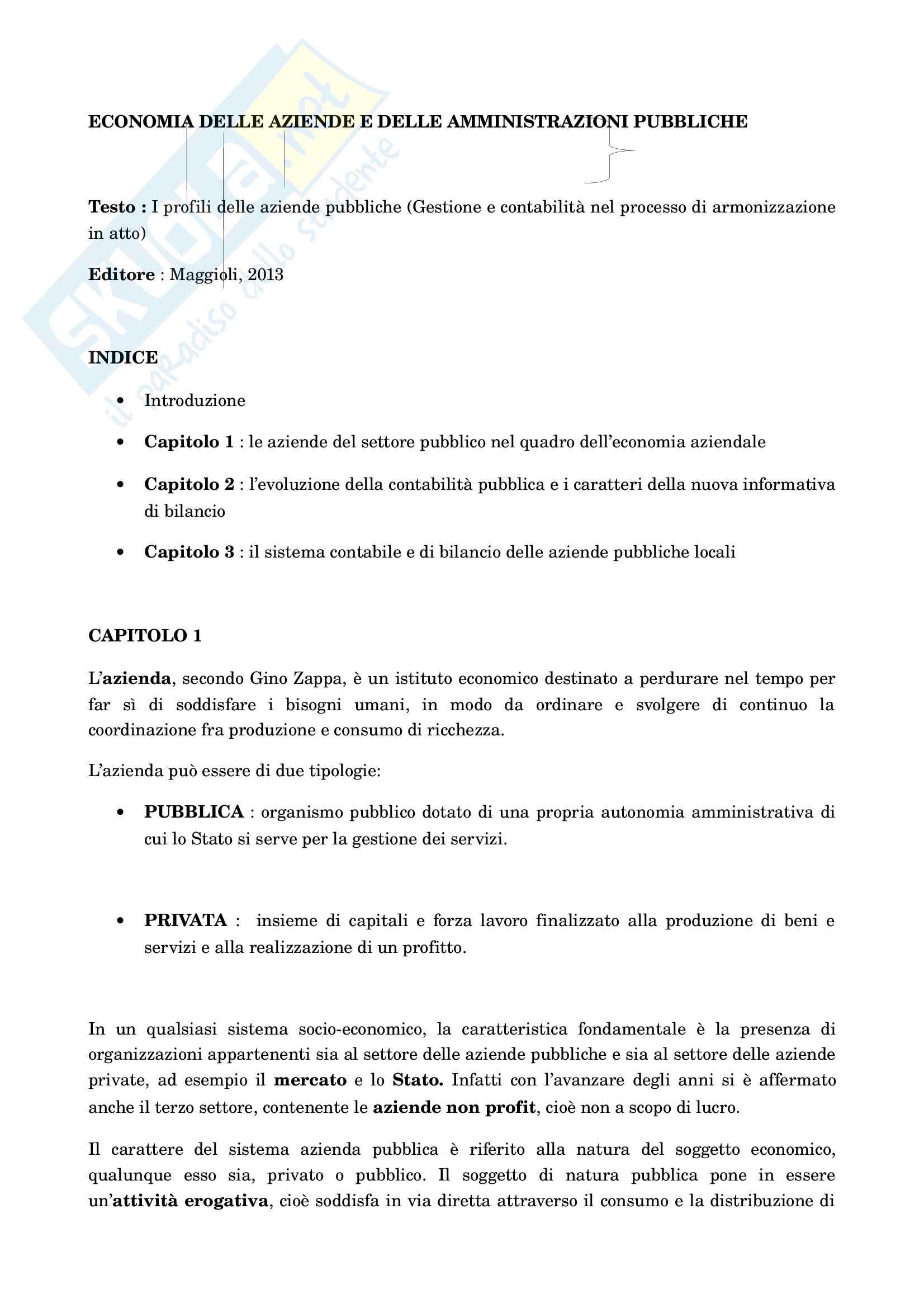 Riassunti esame economia delle aziende e delle Amministrazioni Pubbliche (I e II modulo)