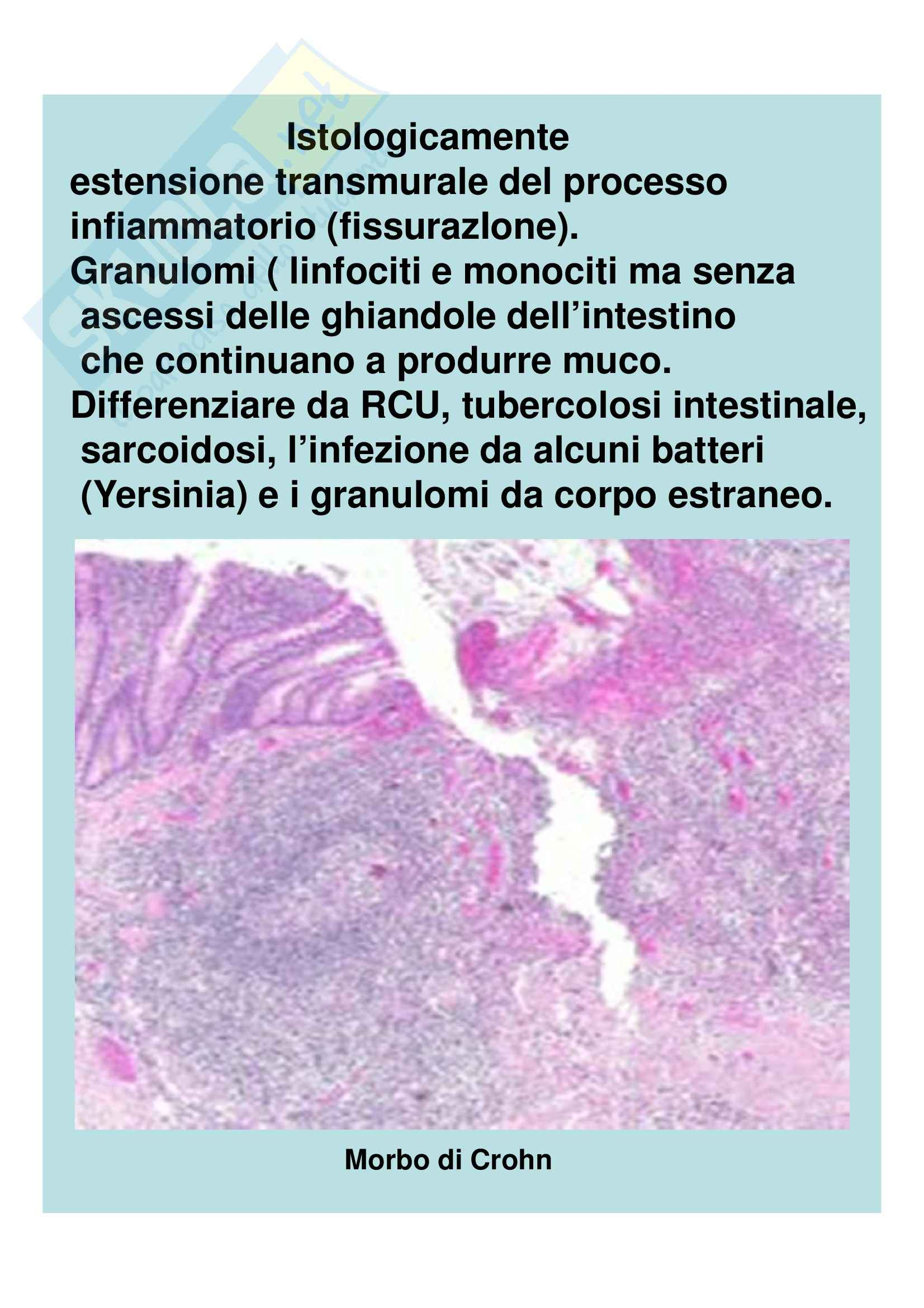 Medicina interna - diarrea cronica Pag. 26