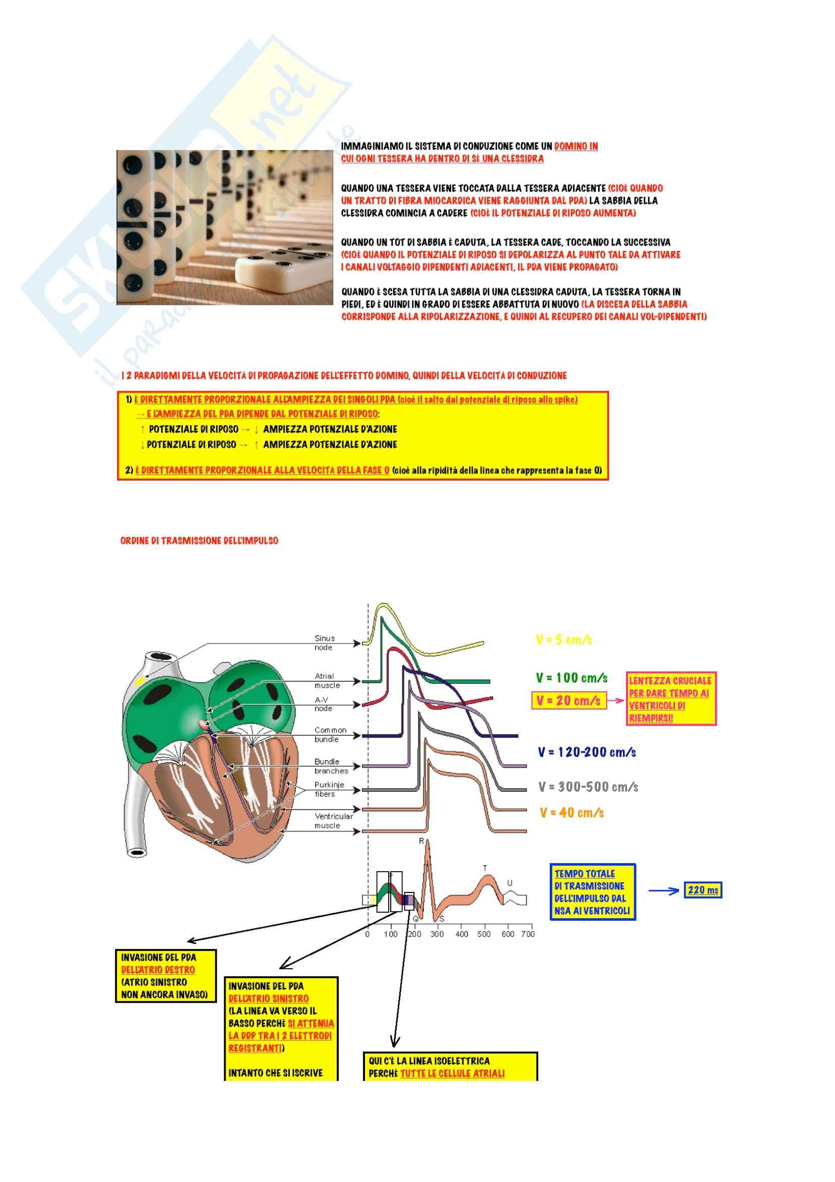 Farmacologia - antiaritmici