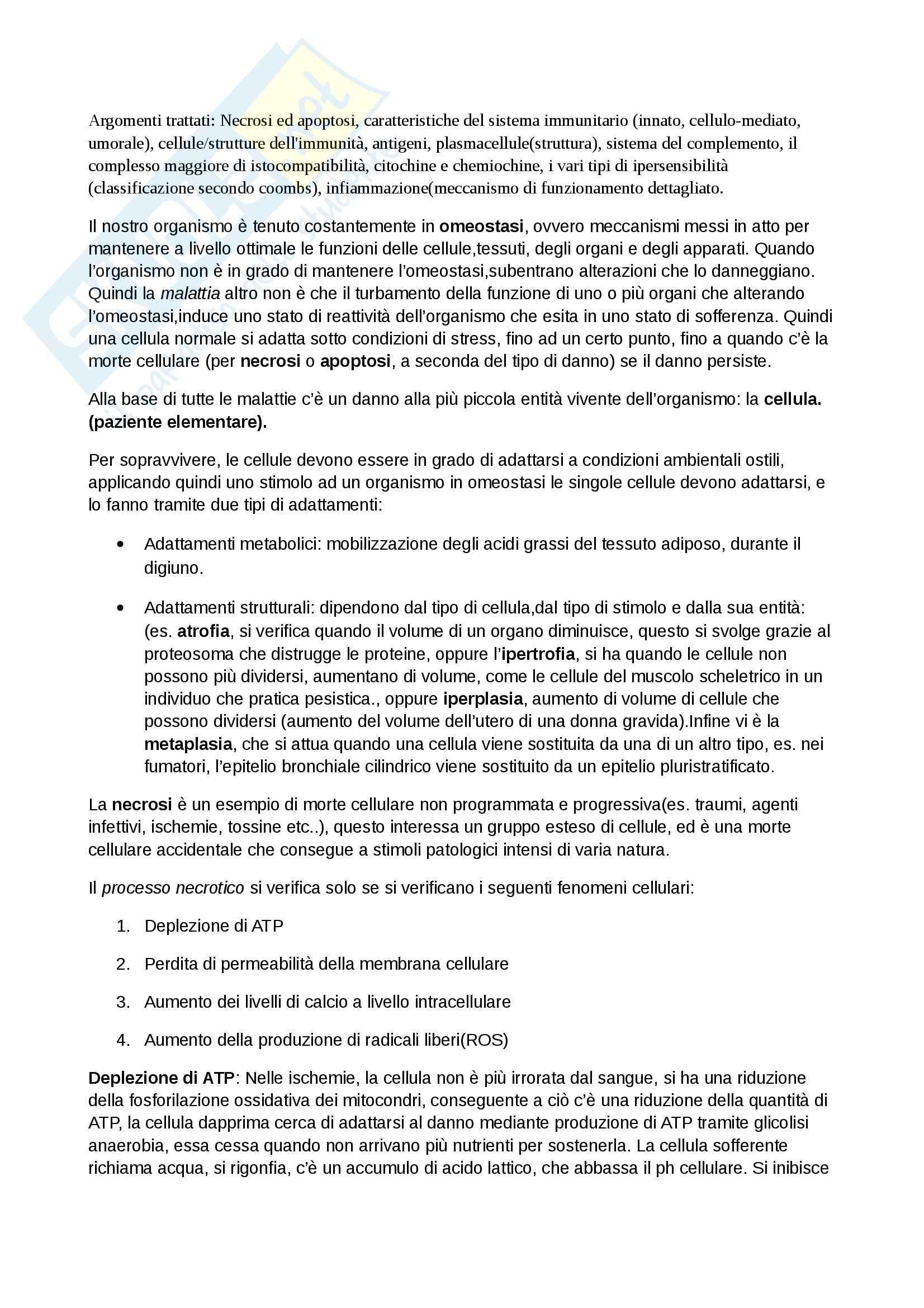 Patologia Generale ed Immunologia Per le Professioni Sanitarie (Infermieristica, TLB, dietistica, TSRM)