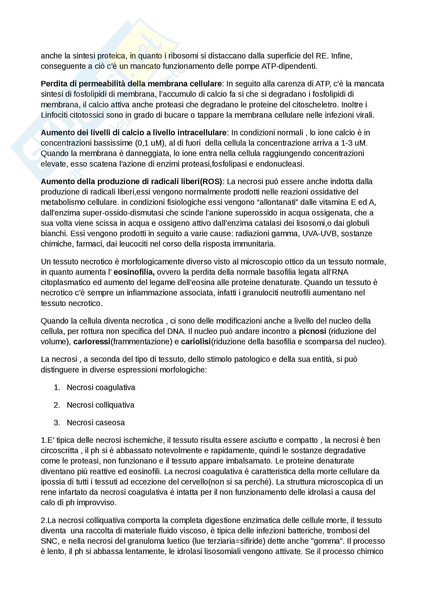 Patologia Generale ed Immunologia Per le Professioni Sanitarie (Infermieristica, TLB, dietistica, TSRM) Pag. 2