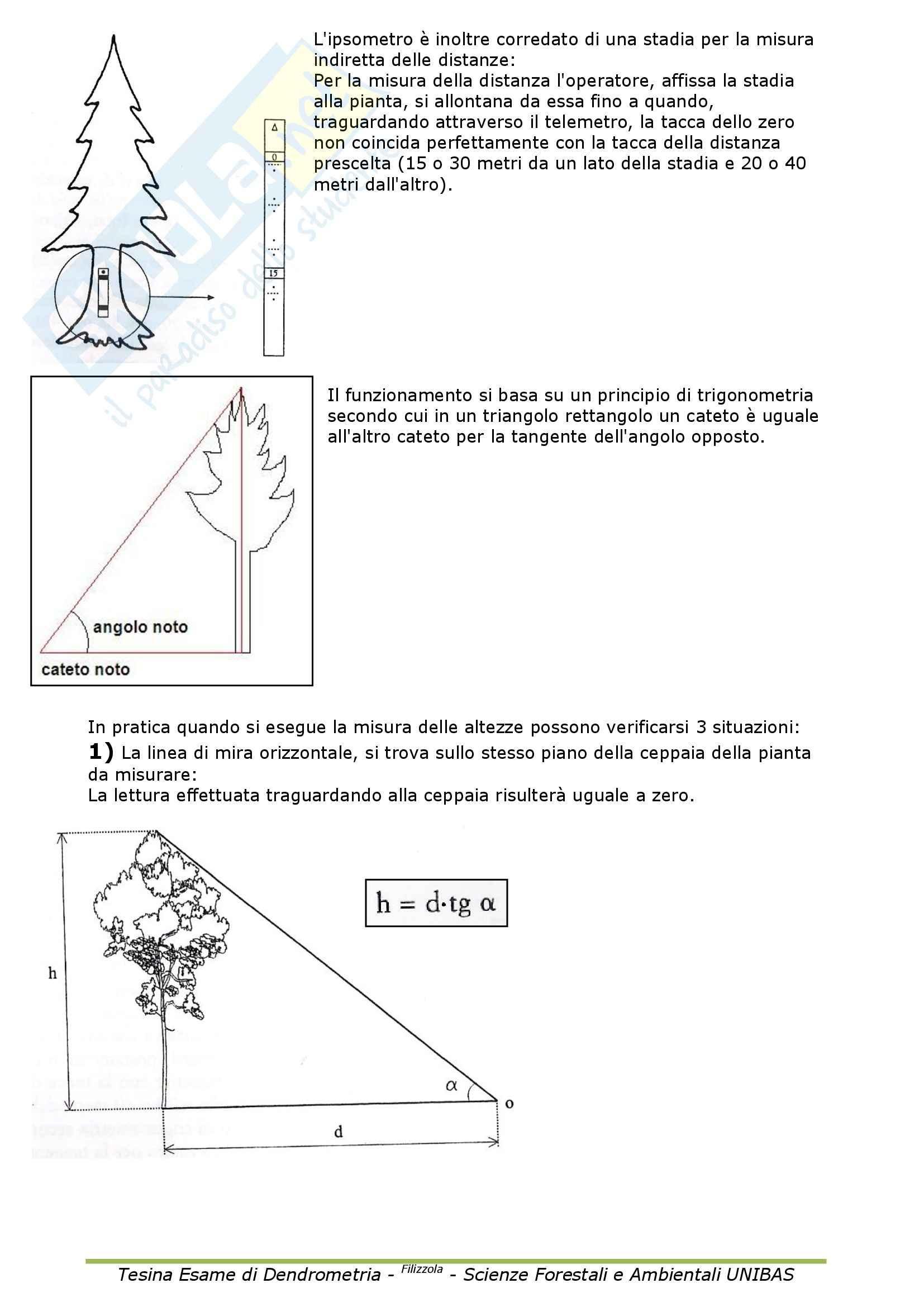 Dendrometria - Appunti Pag. 16