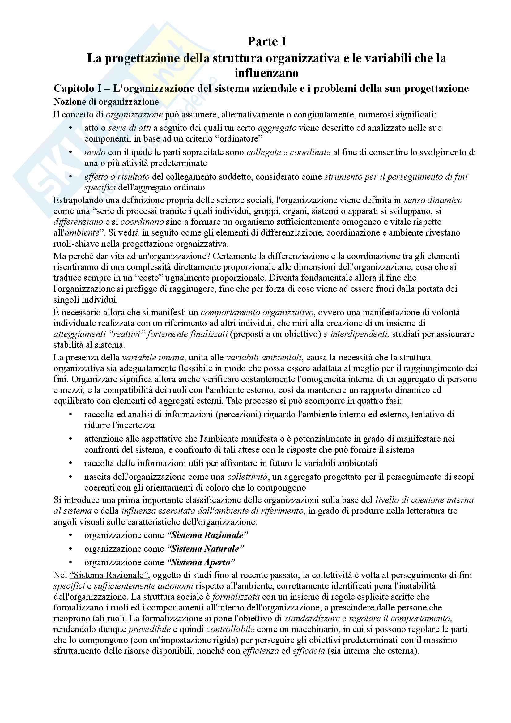 Riassunto esame Organizzazione Aziendale, prof. Cavaliere, libro consigliato Elementi di progettazione organizzativa e cenni di programmazione del personale, D'Anna