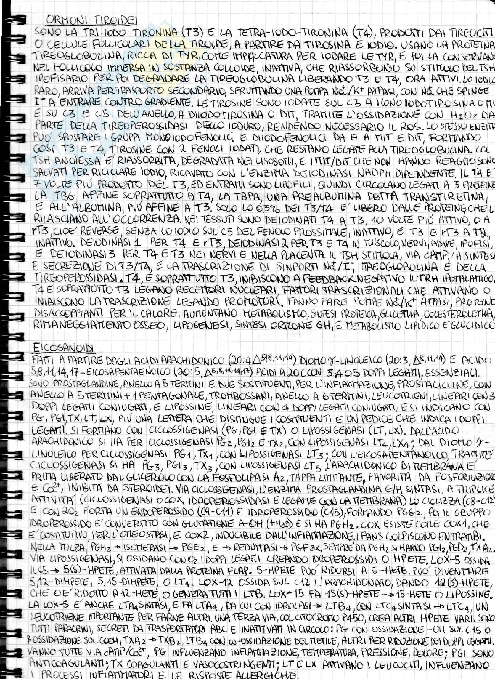 Riassunto esame Biochimica medica generale, prof. Chiarugi Pag. 26