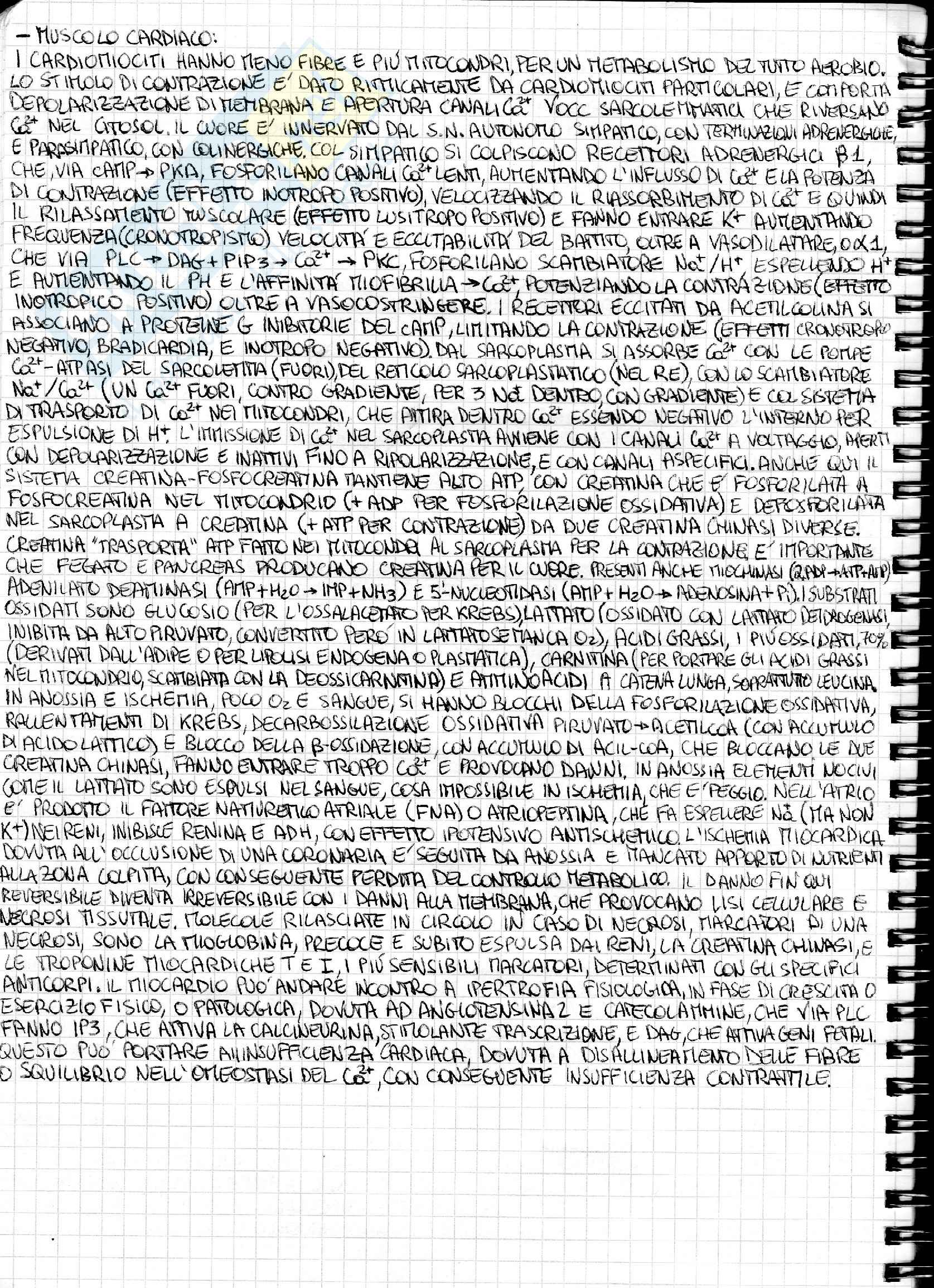 Riassunto esame Biochimica medica generale, prof. Chiarugi Pag. 31